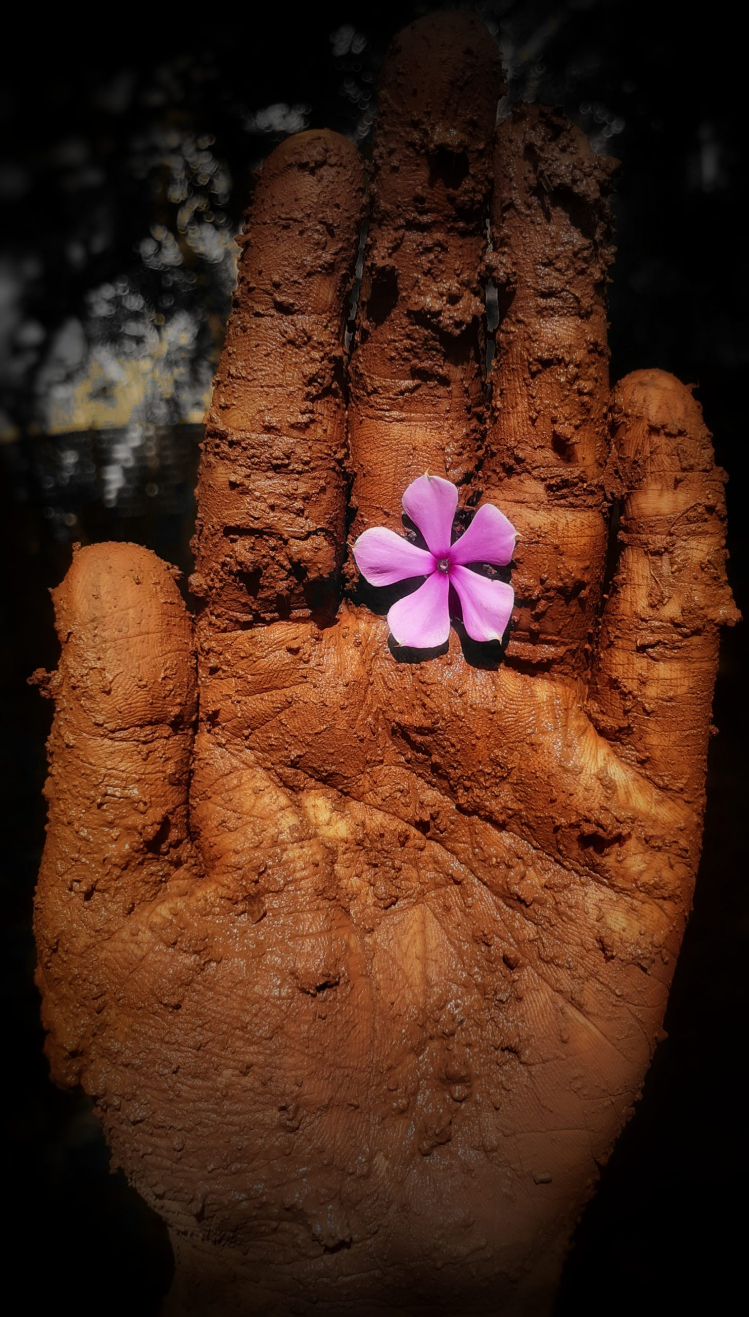 A flower on a muddy hand