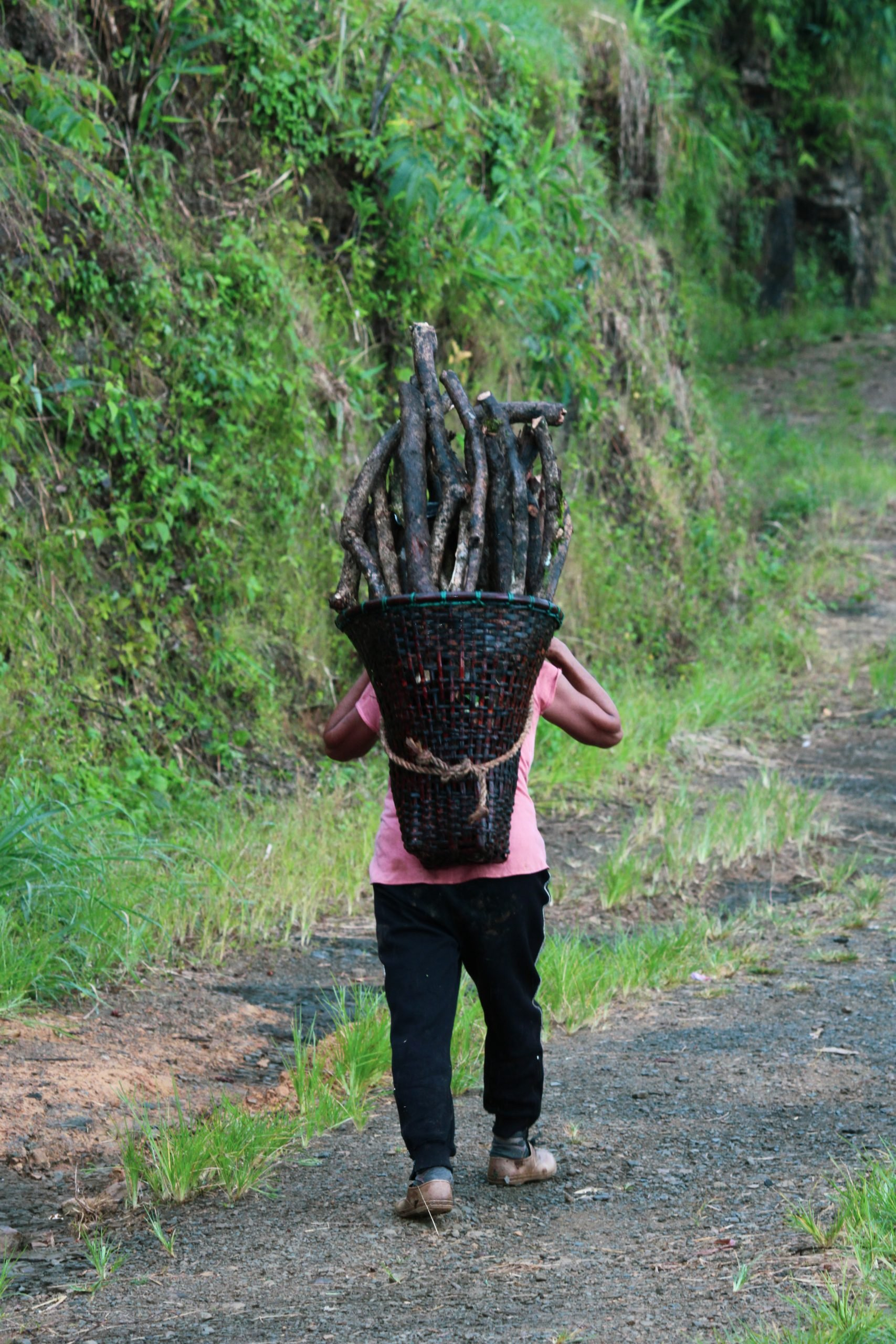 A lady carrying bamboo basket