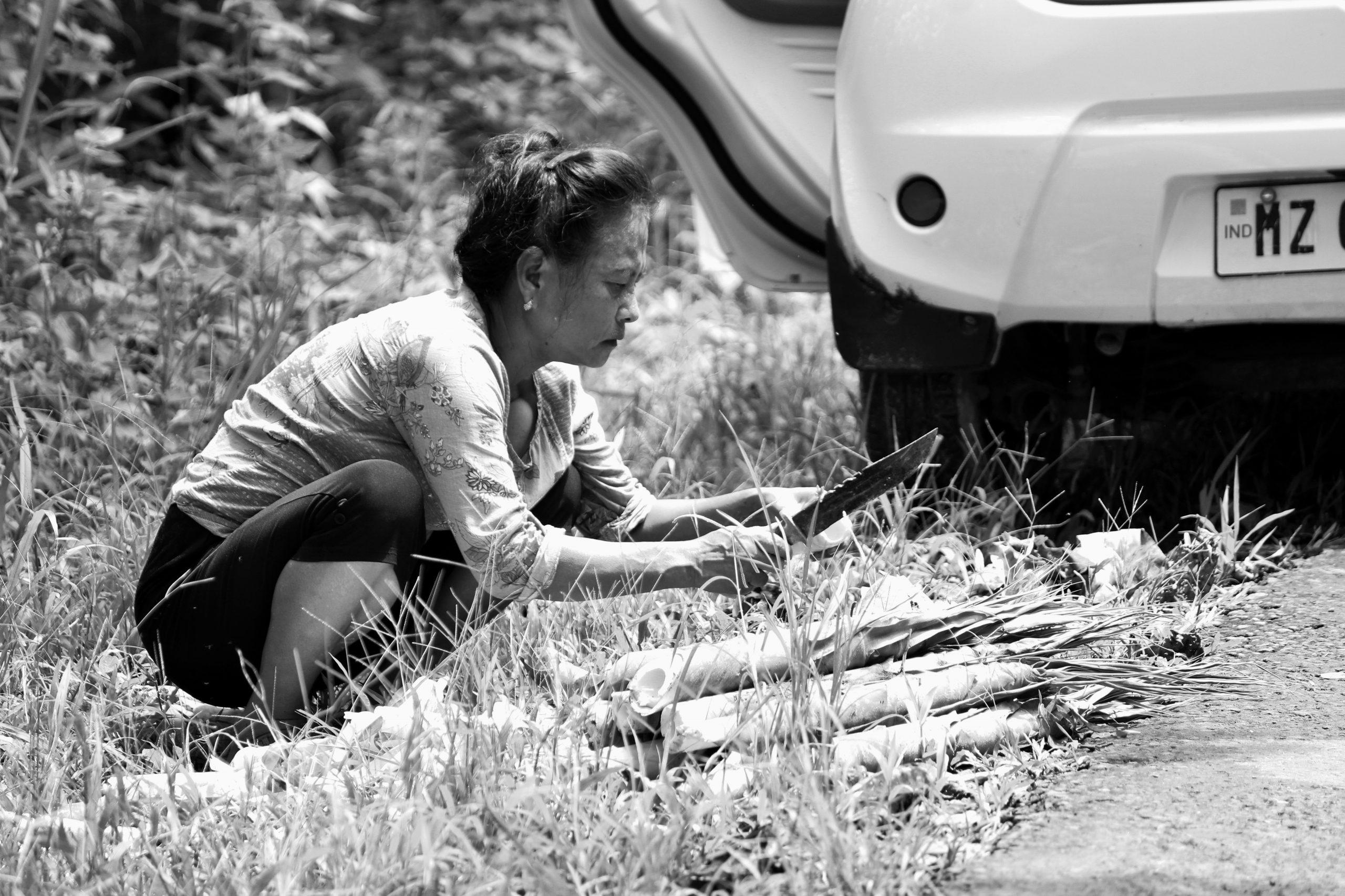 A lady cutting bamboo sticks