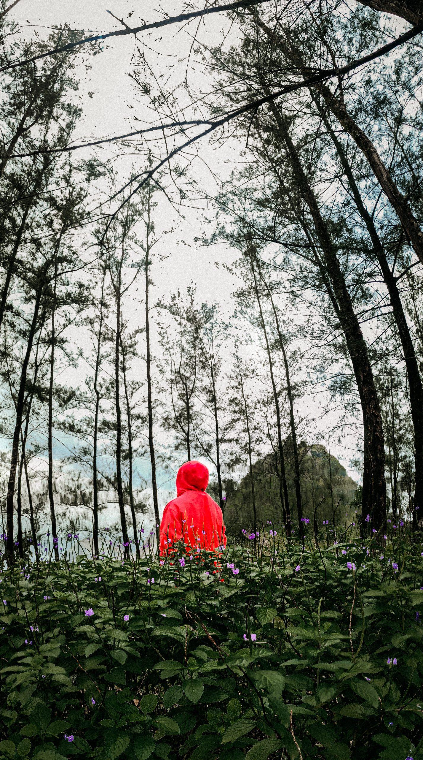 Lone guy in wilderness.