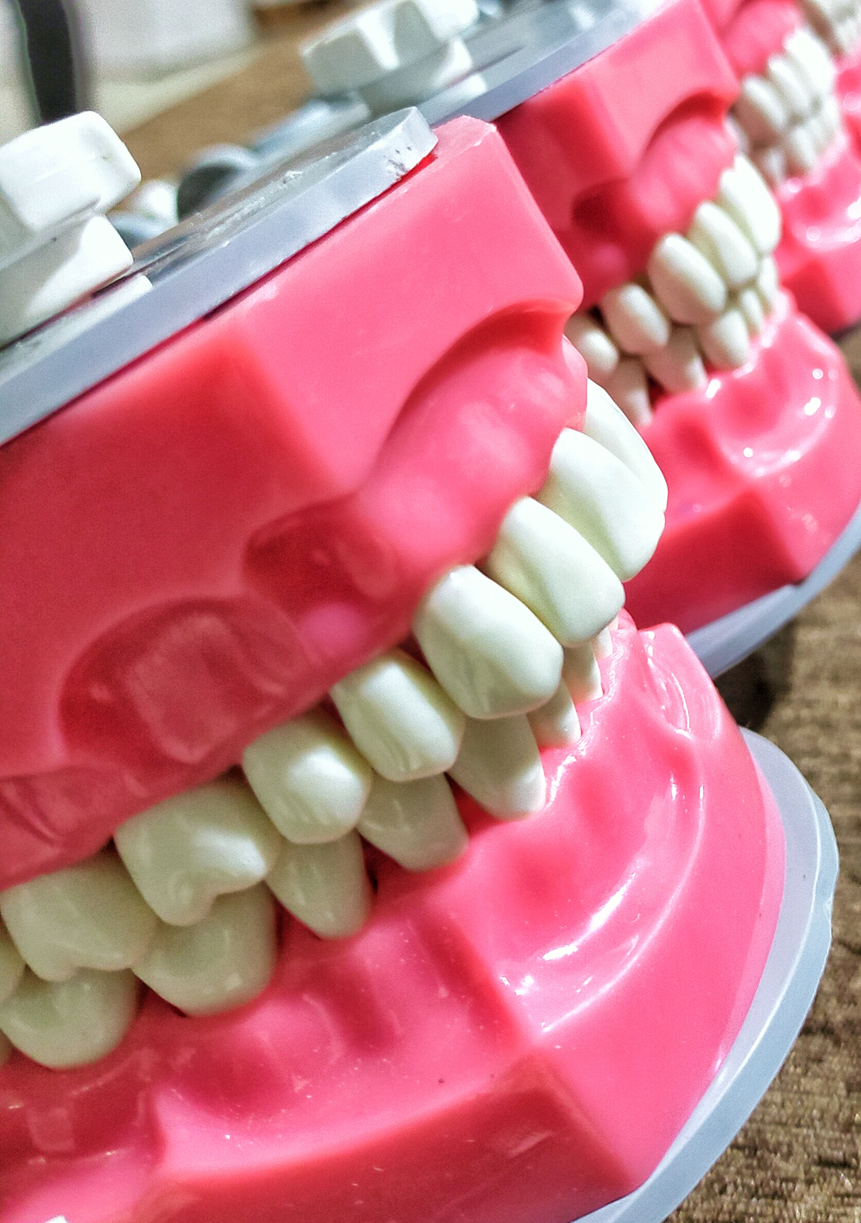 Artificial jaw set