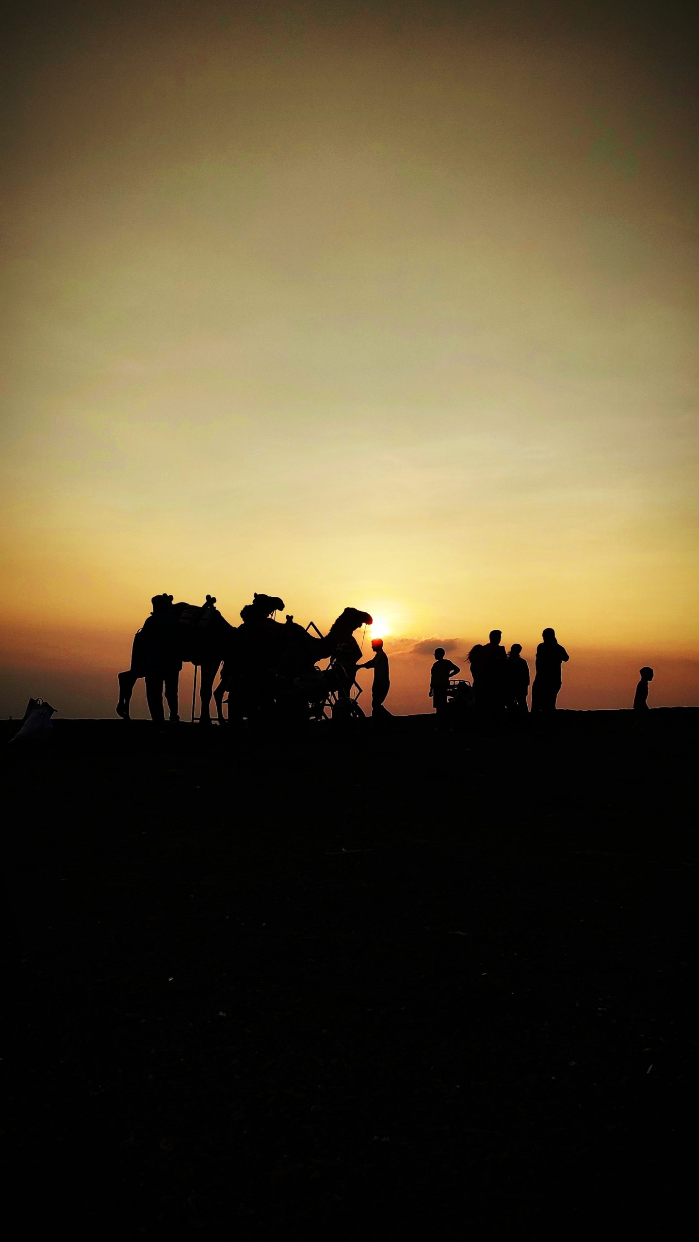 tourists in a desert