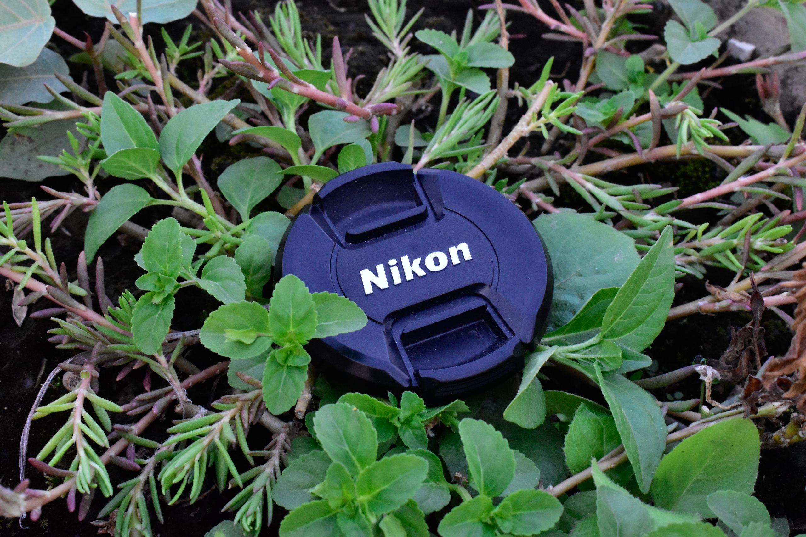camera lens cap in leaves