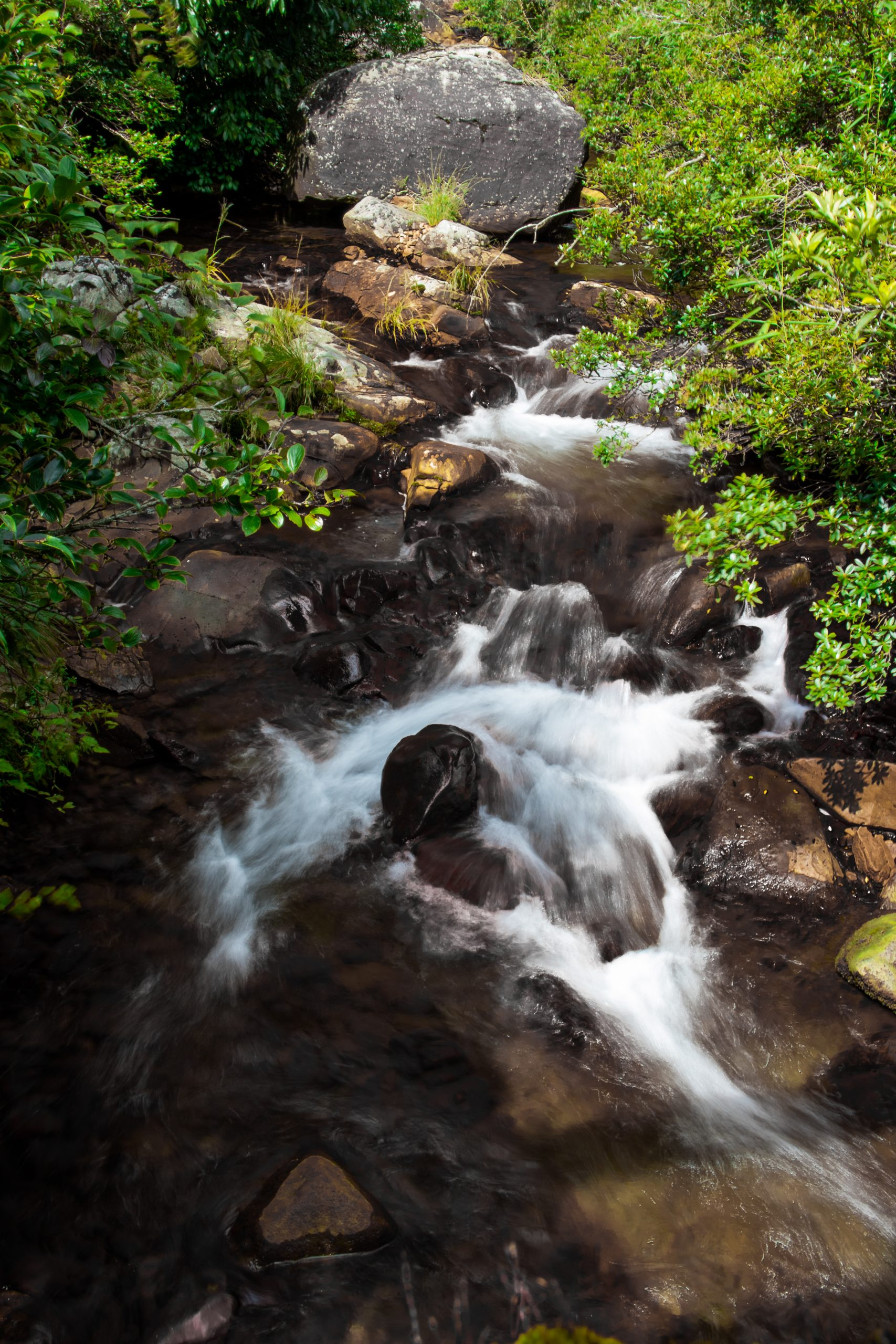 Clear Water Stream