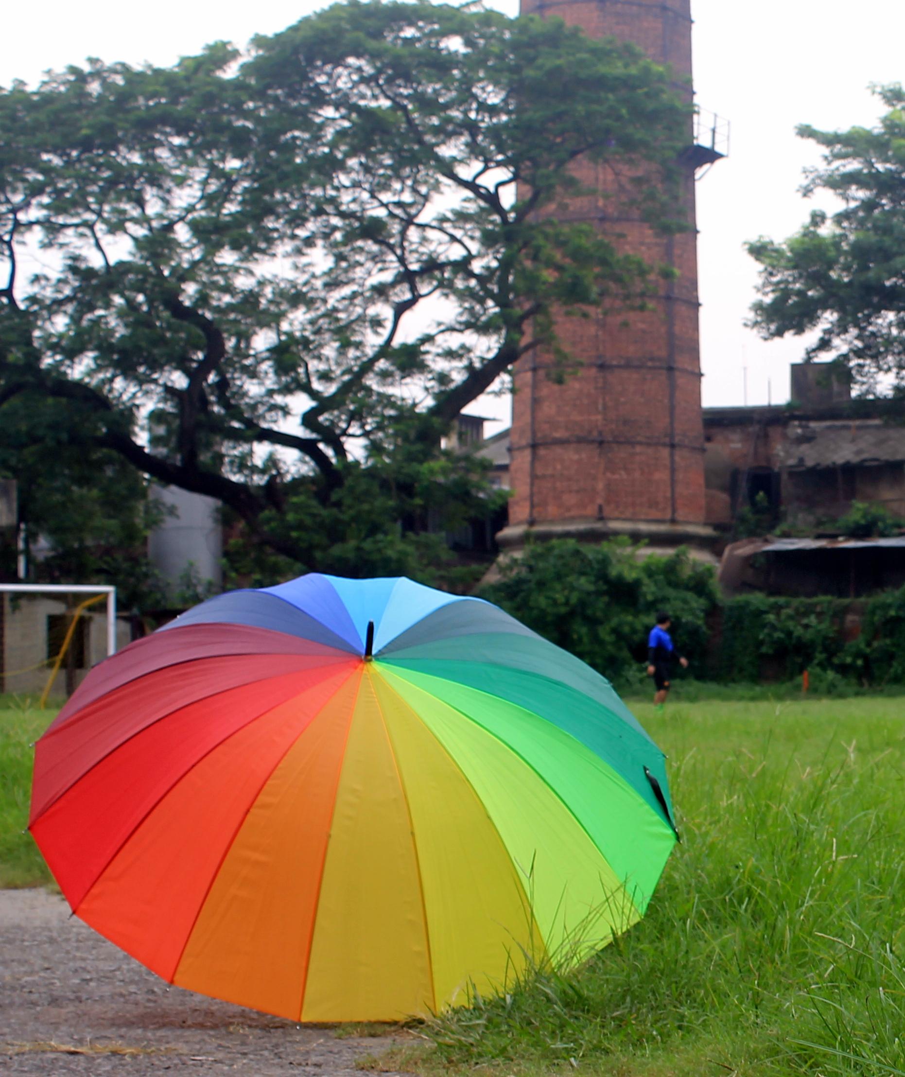 umbrella in a garden