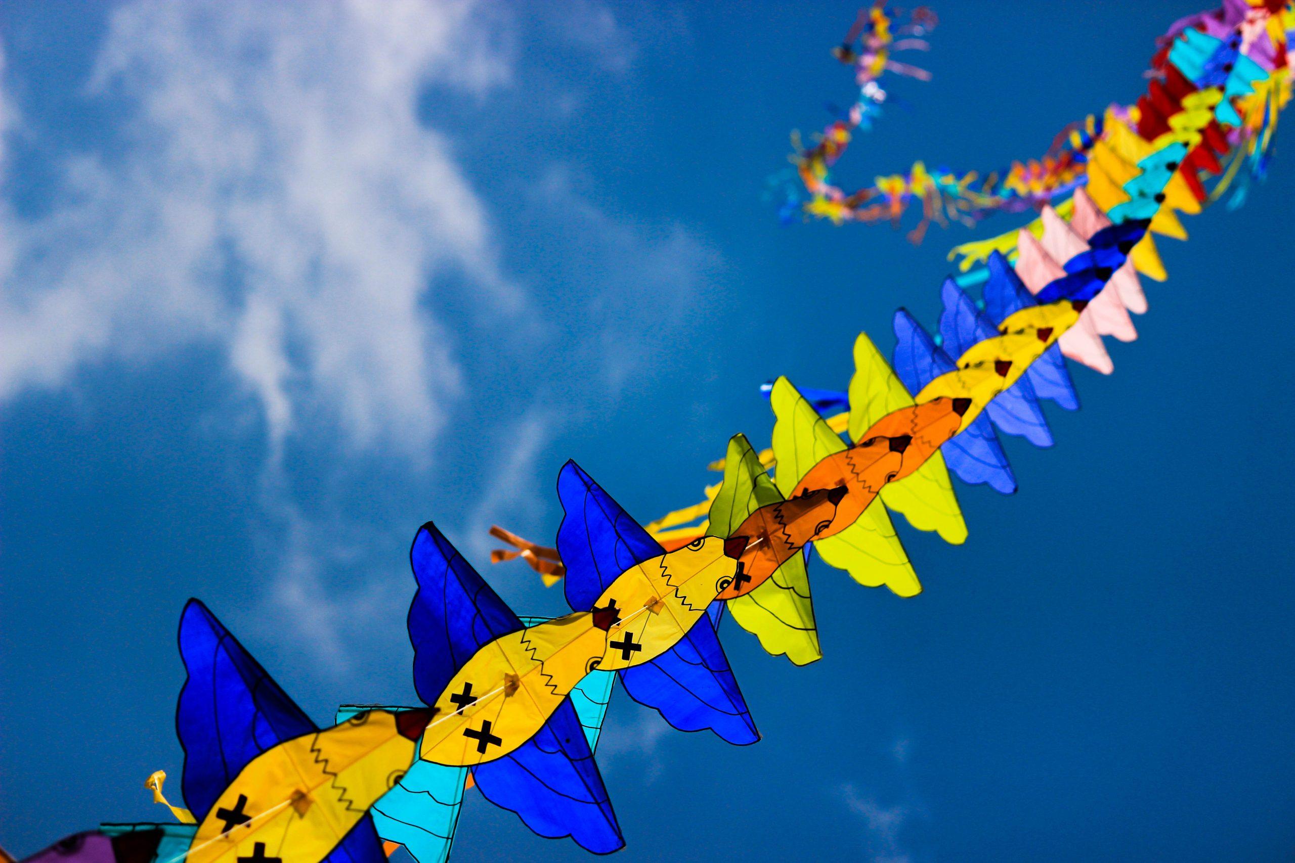Dussehra kite festival at Mysore