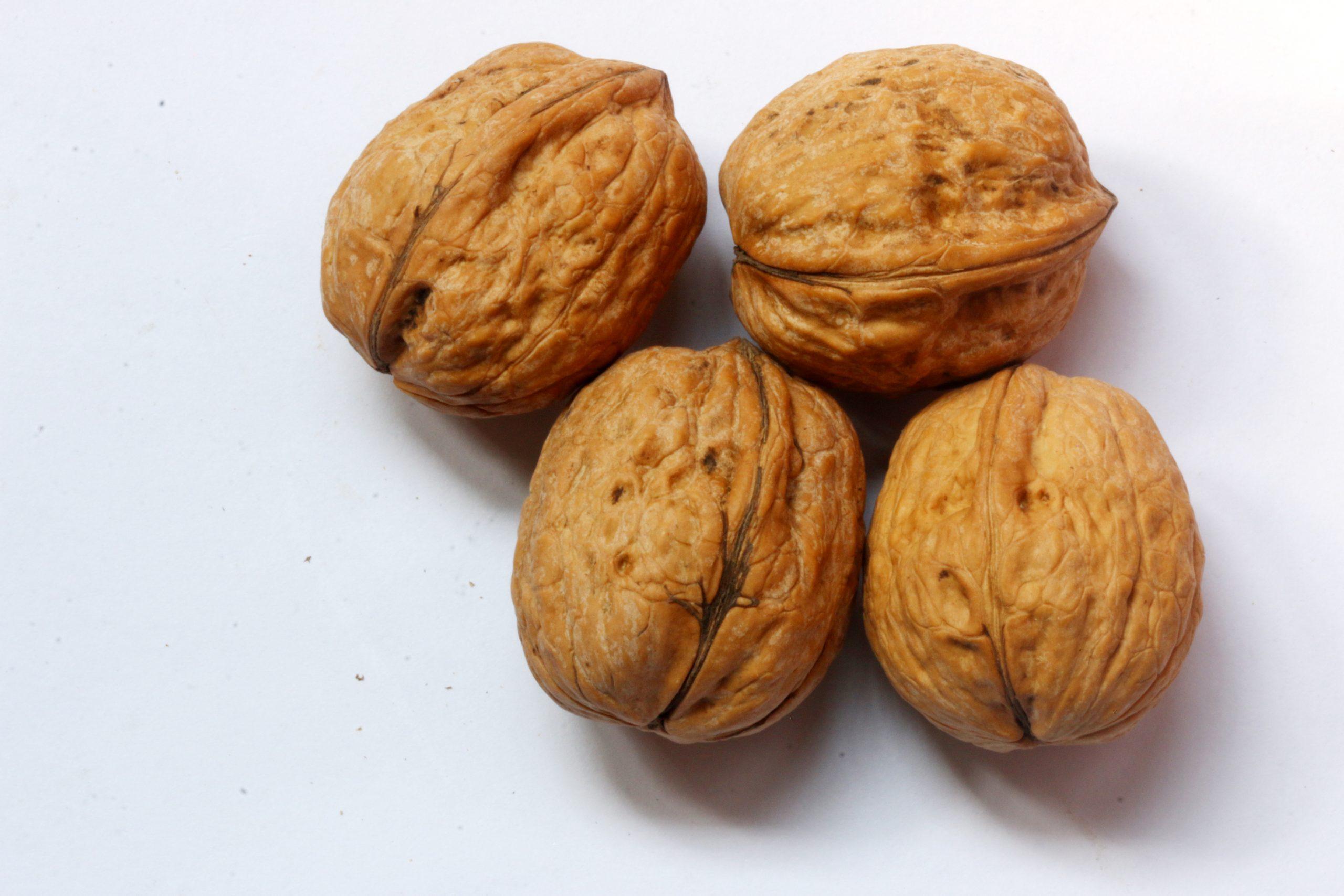 Four walnuts