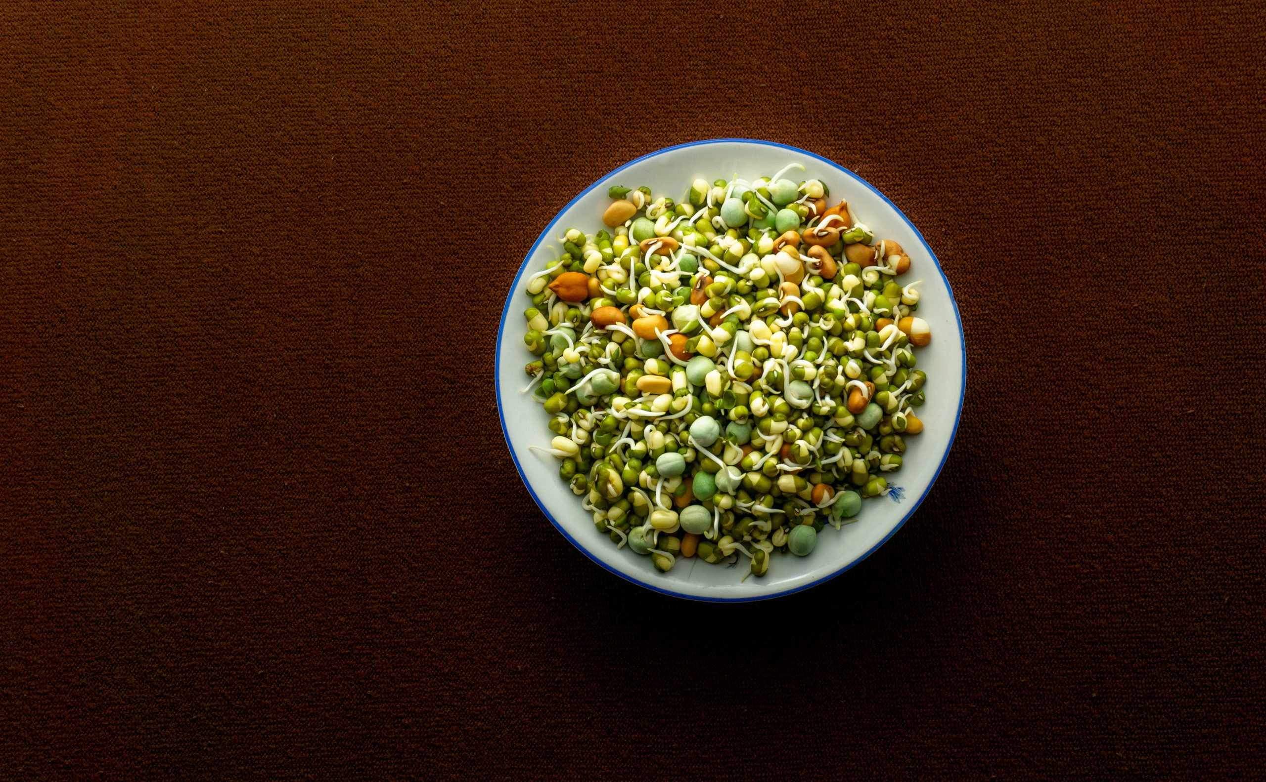 Gram sprouts in a plate