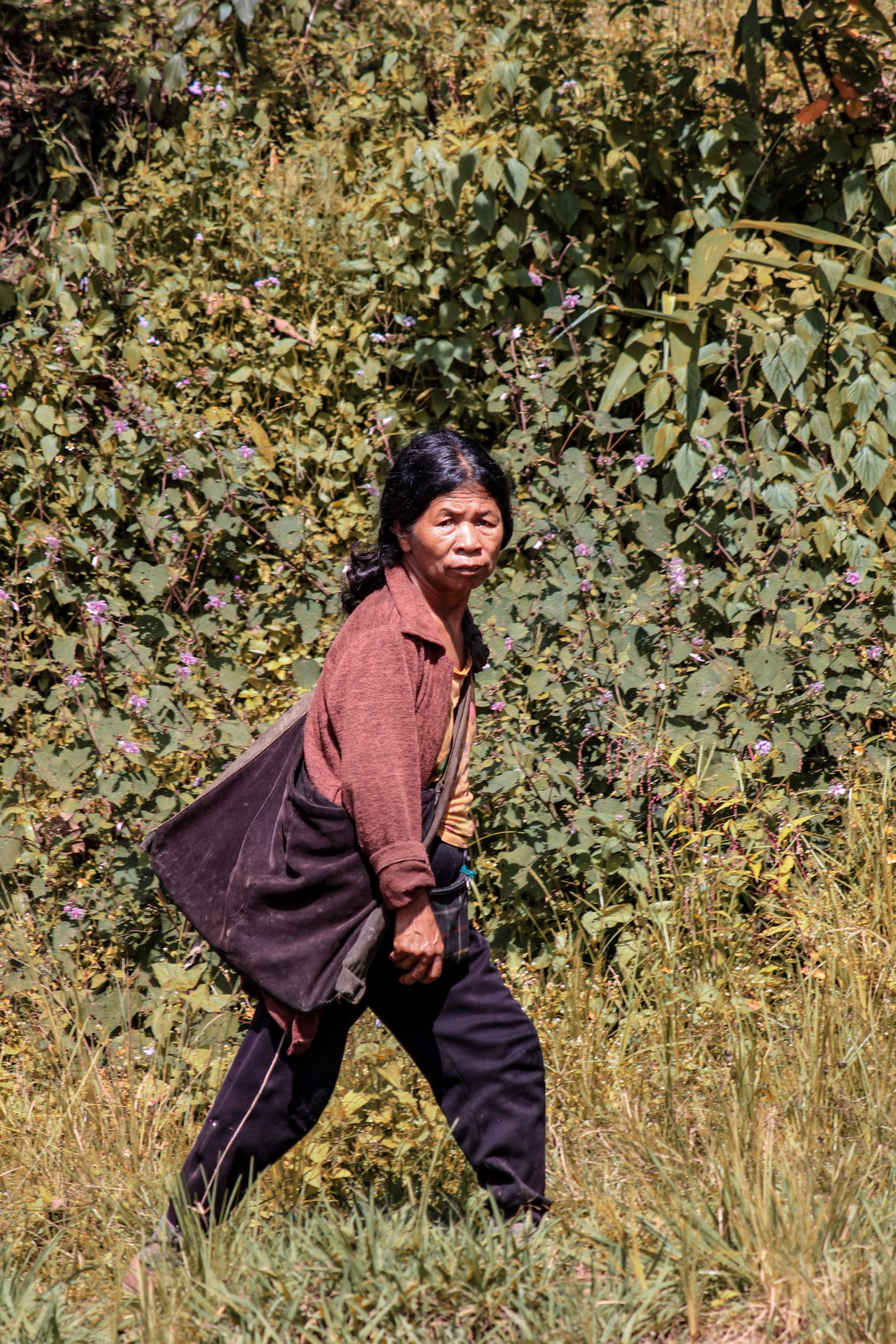 An old lady walking through jungle