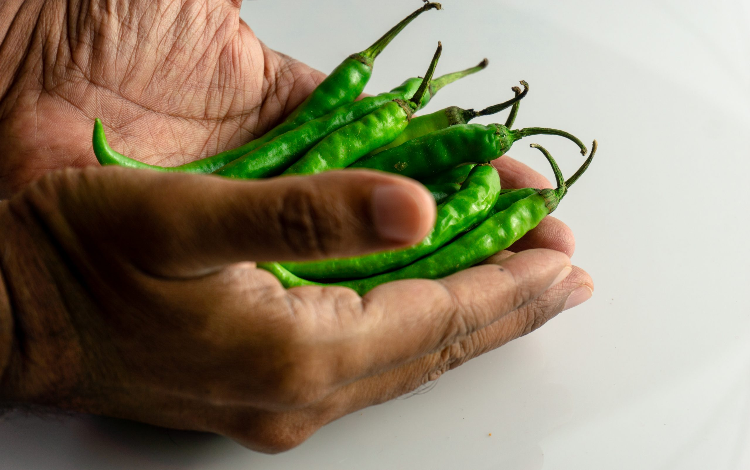 green chilly in hands