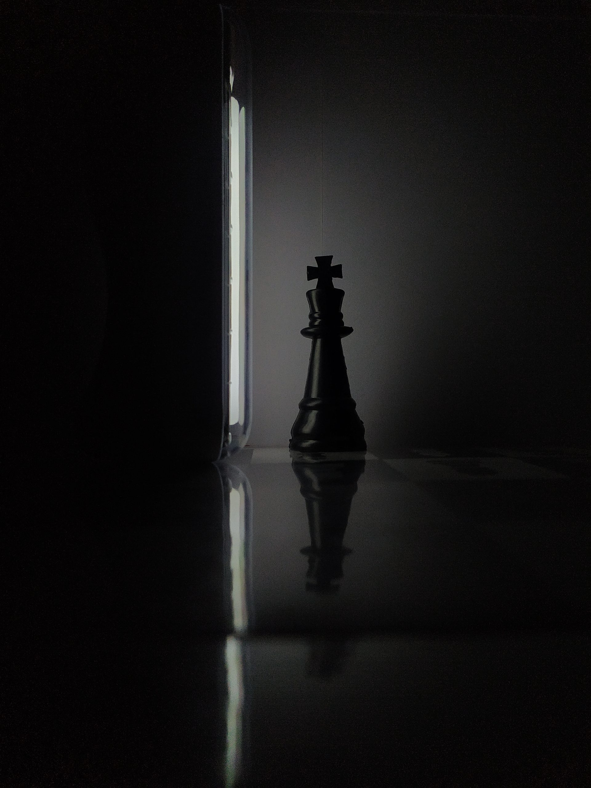 King of Chess game