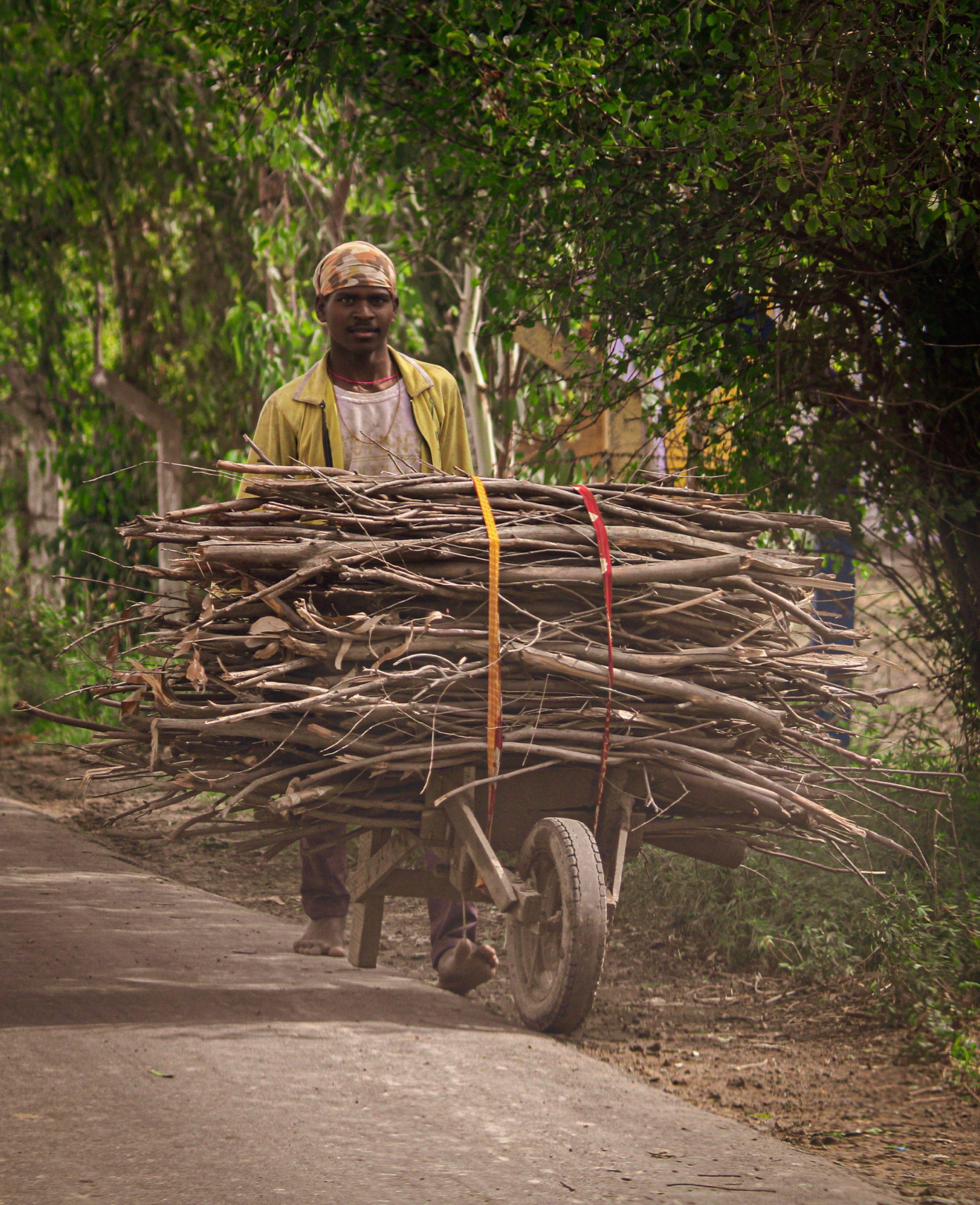 Man carrying woods on a Wheelbarrow