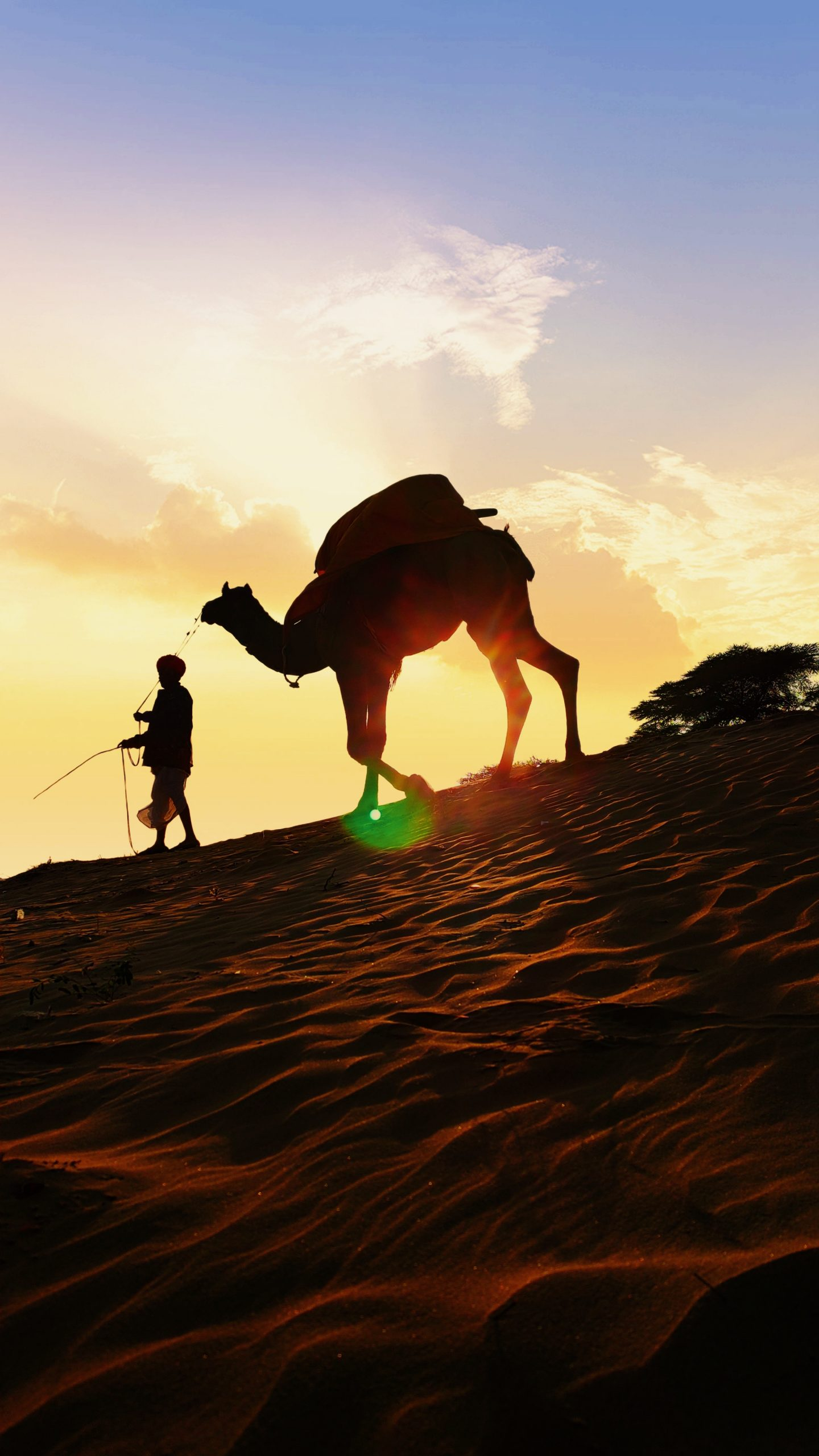 A man and a camel in the desert