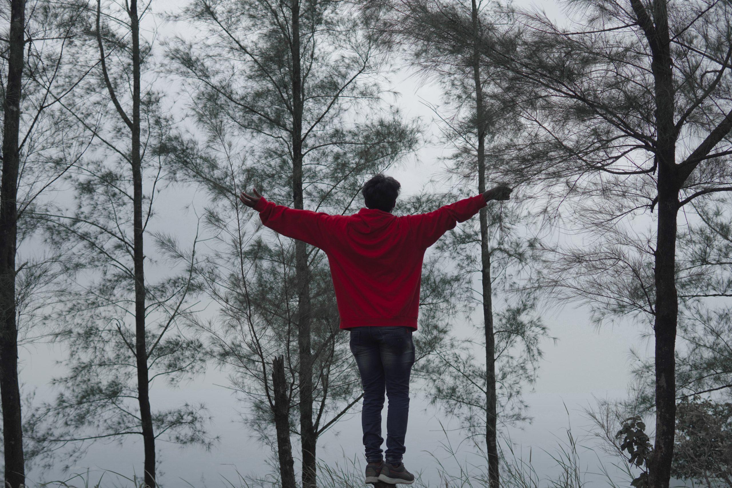 man admiring a snow forest