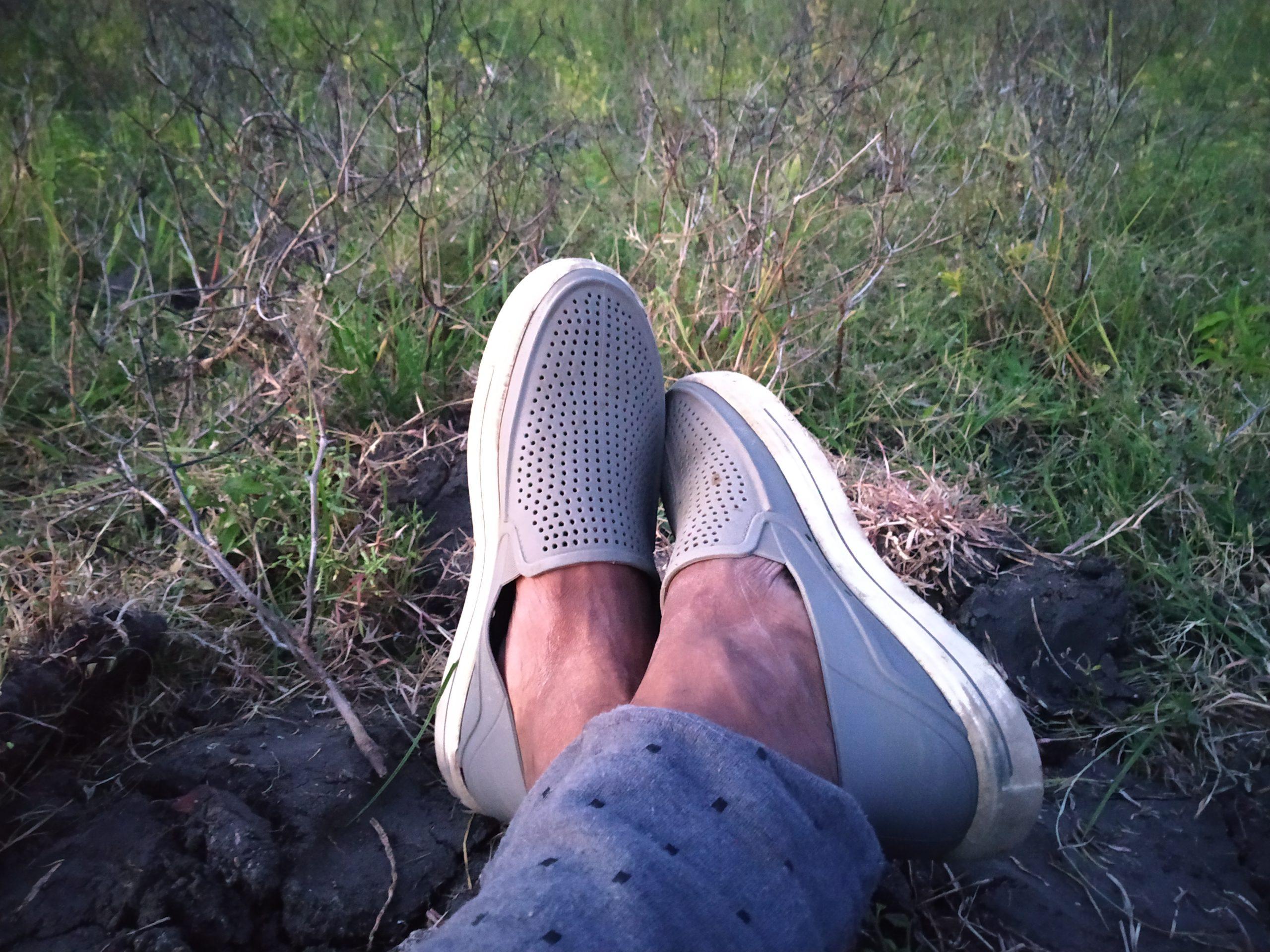 Resting legs in nature