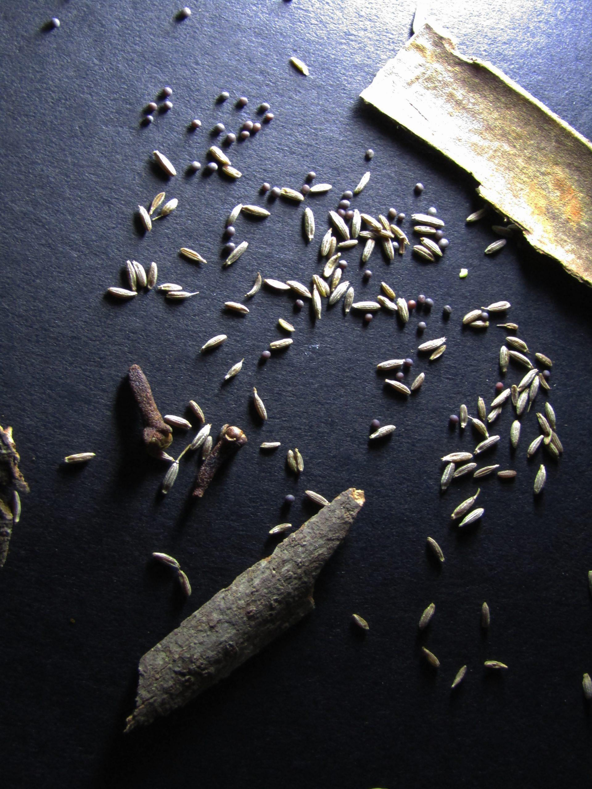 Cinnamon and cumin seeds