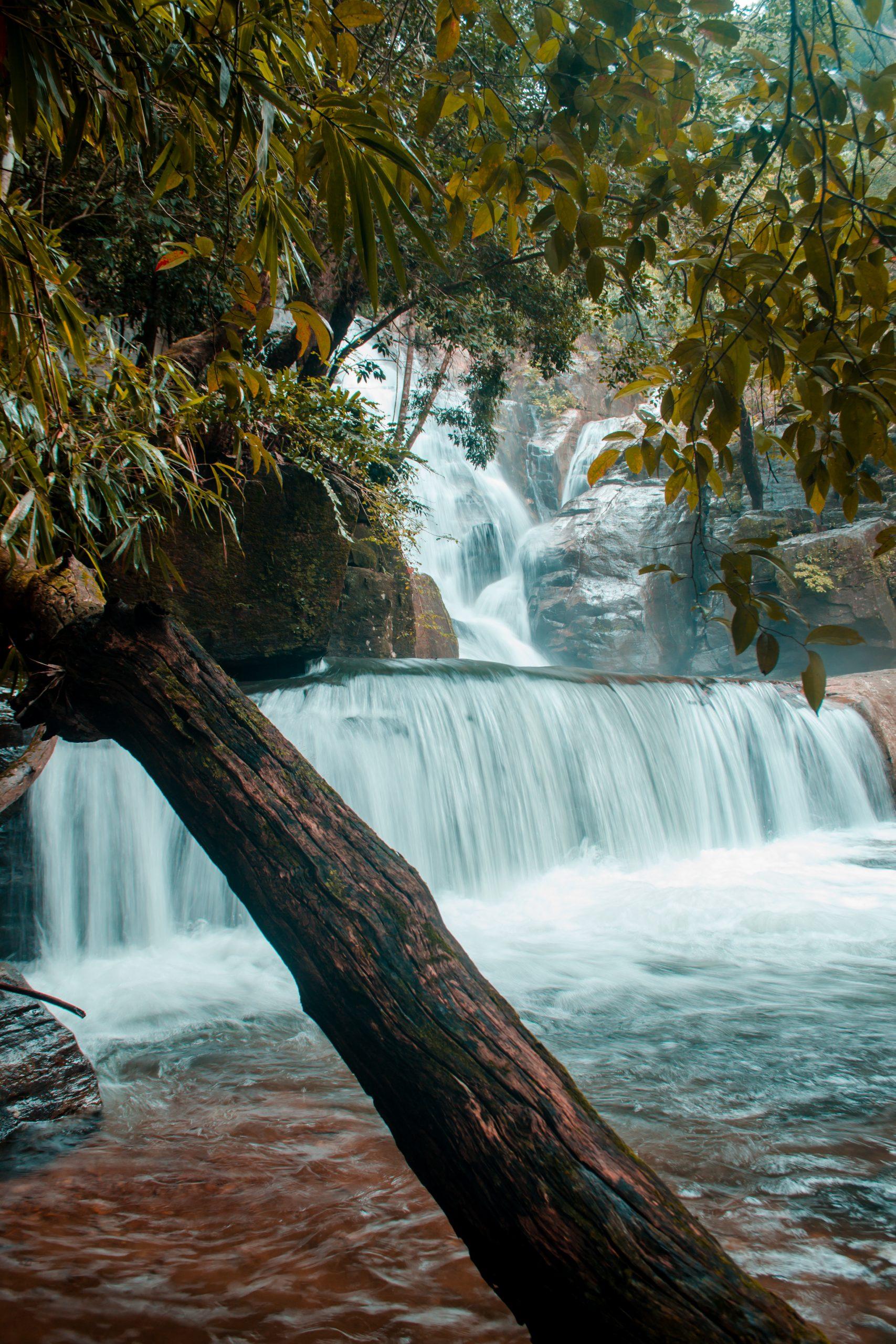 Compelling Vazhvanthol waterfalls.