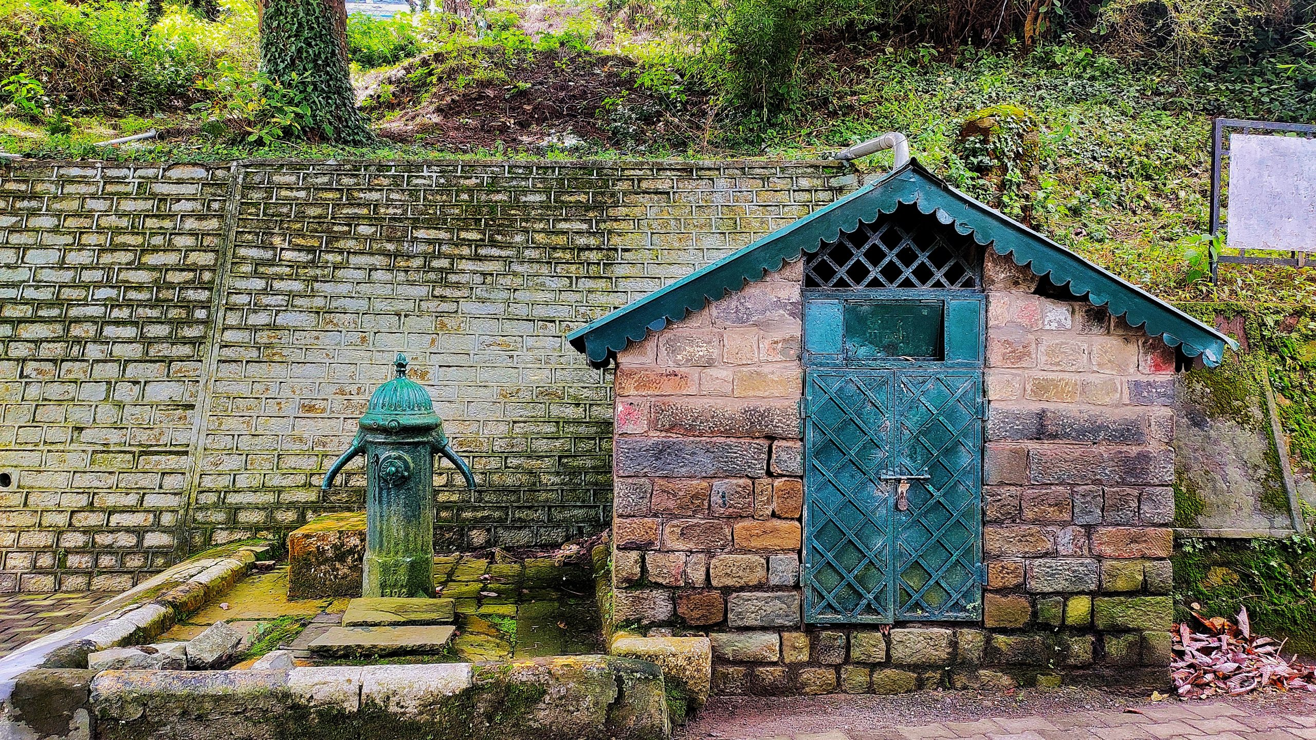 Vintage Iron water pump