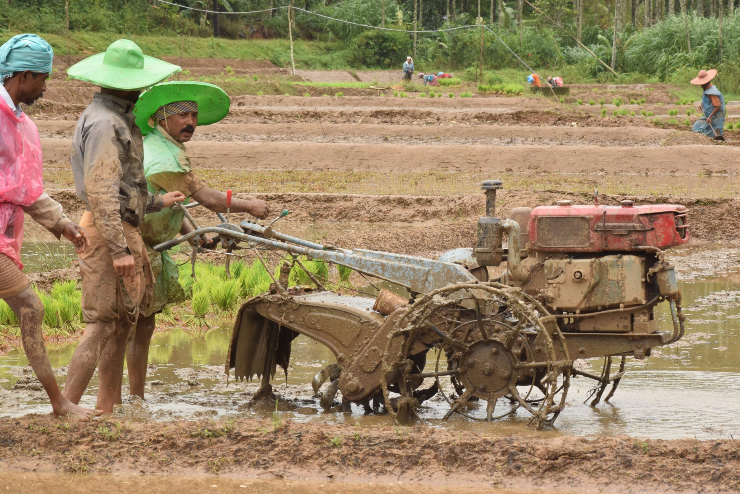 Farmers ploughing with a machine