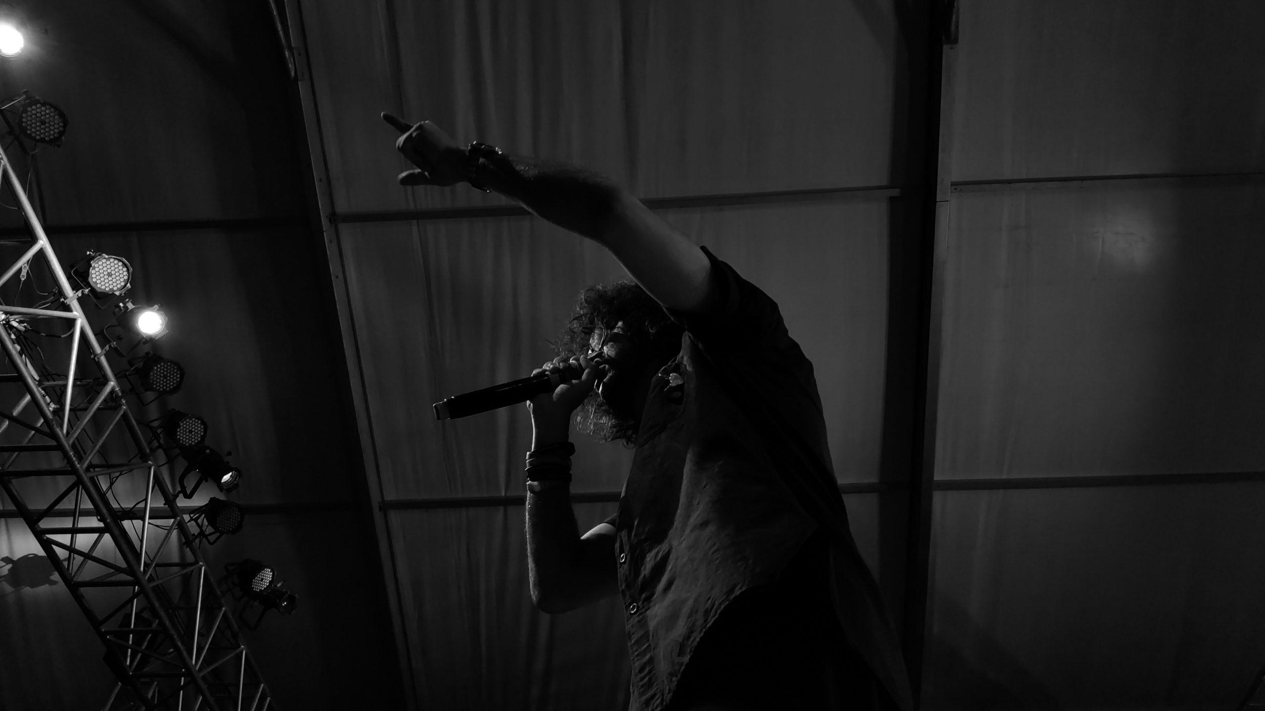 Singer in Concert