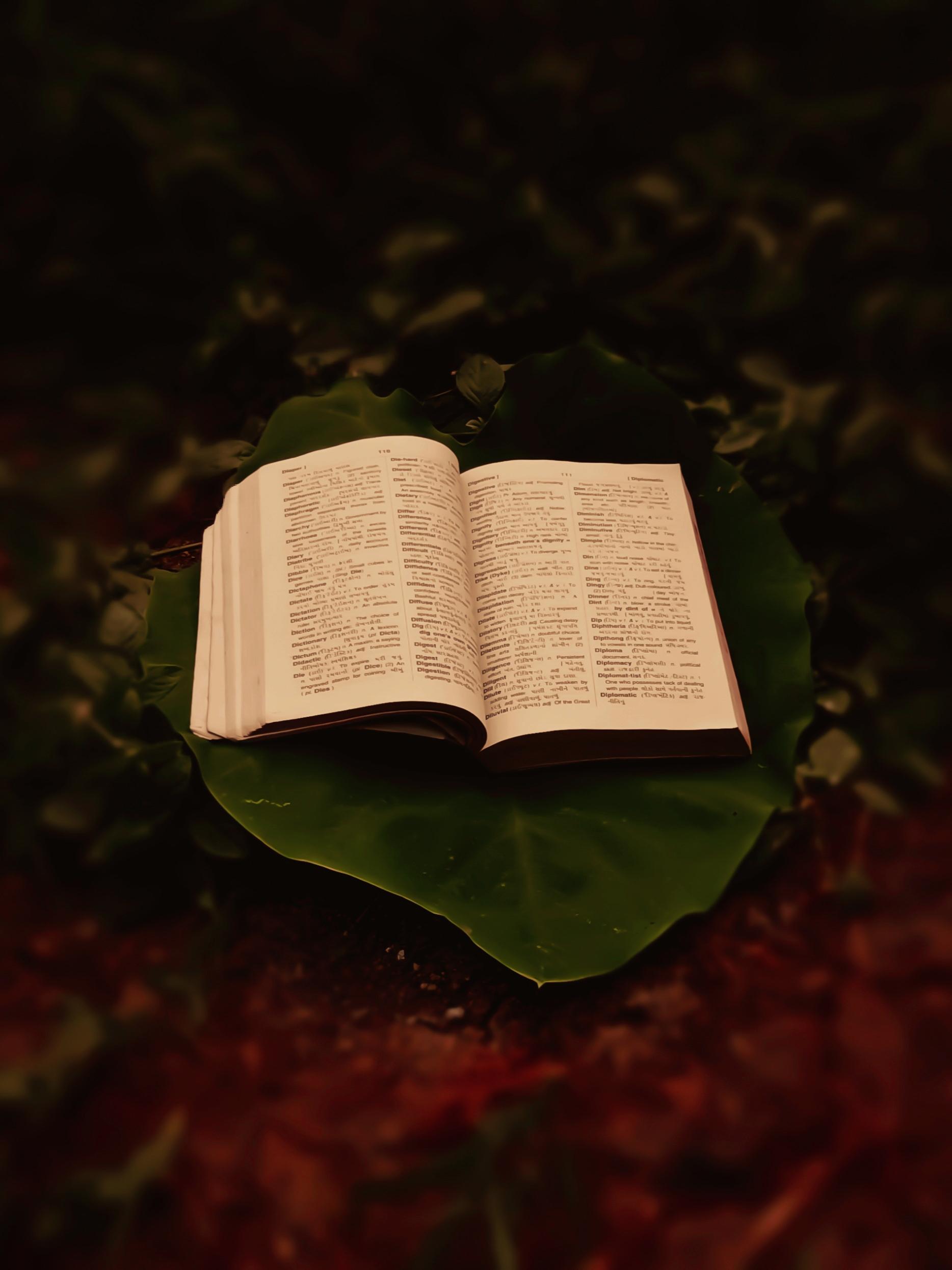 book on a leaf