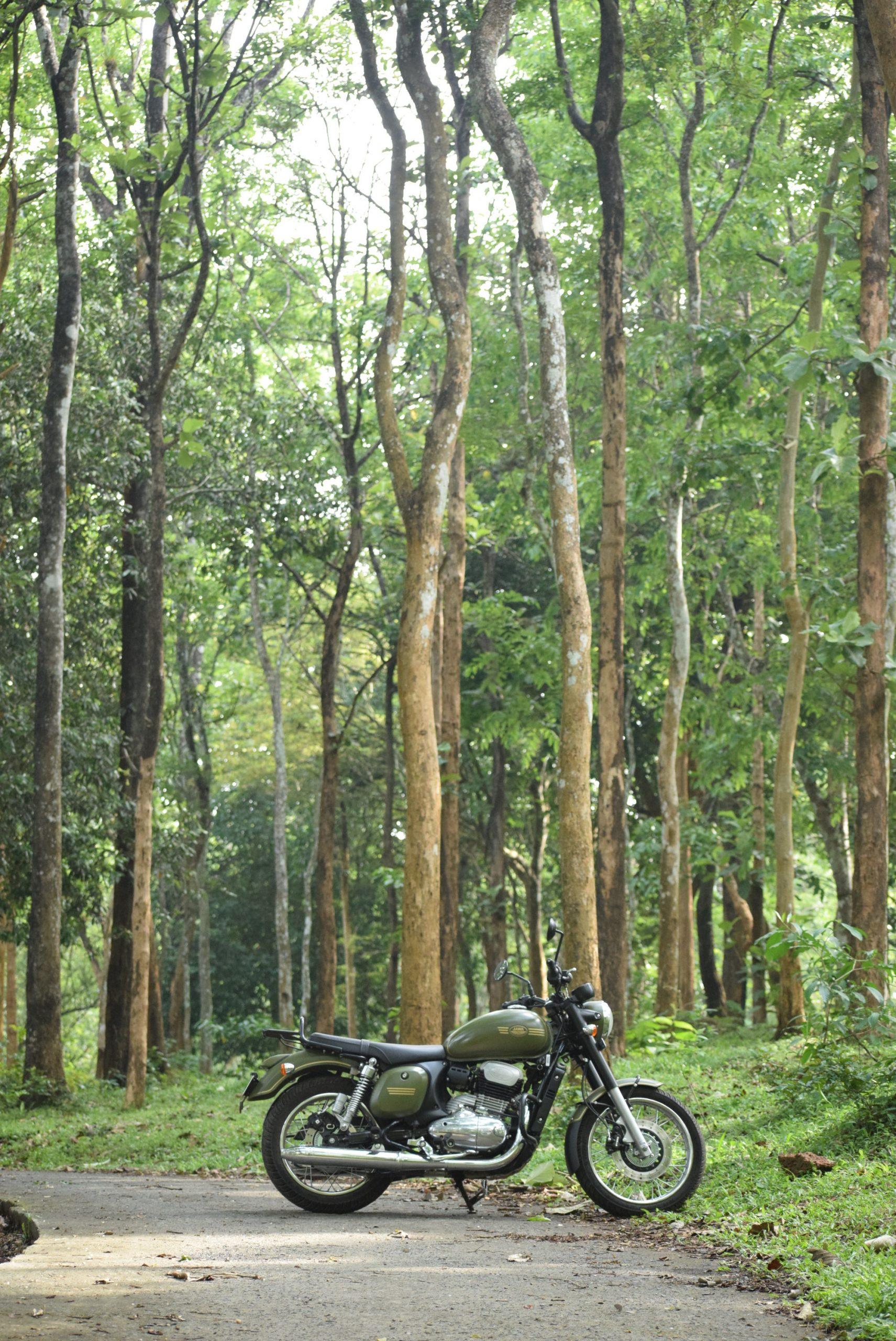 bike on forest path