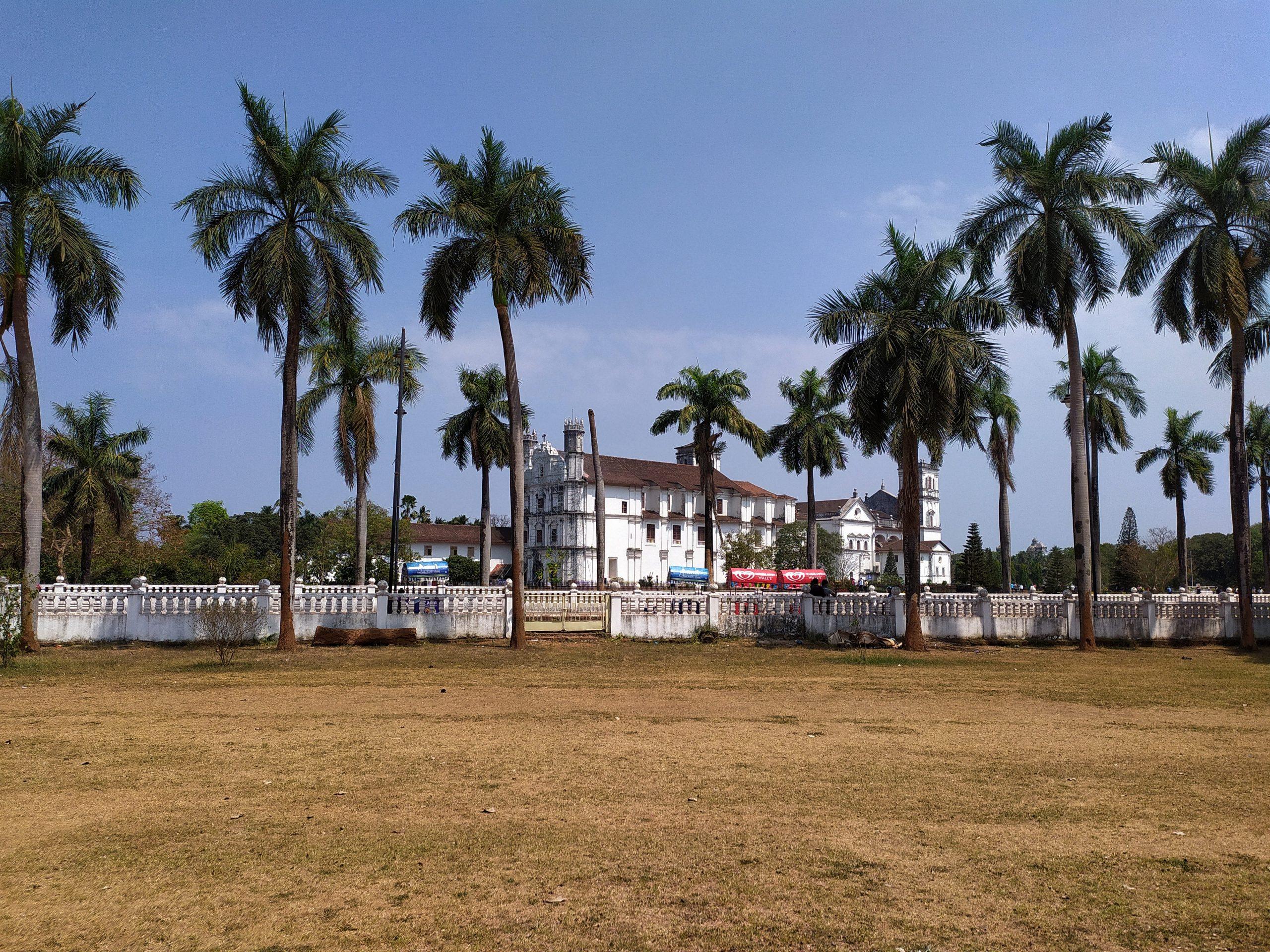 A building around palm trees