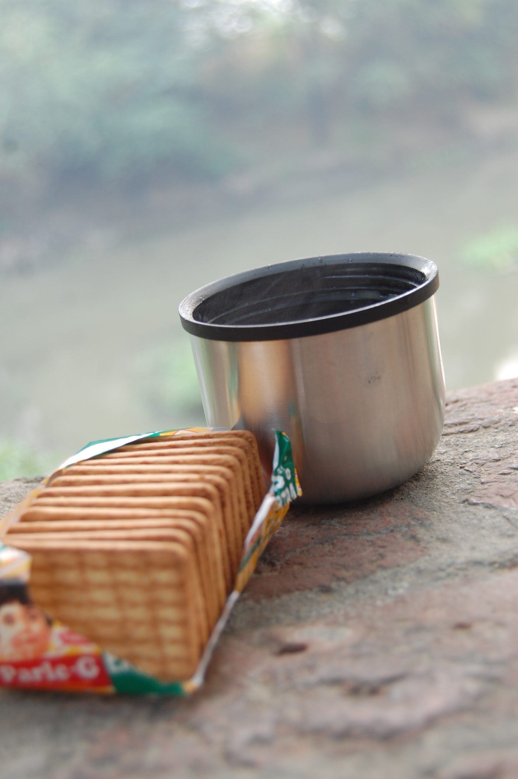 A tea cup and biscuits