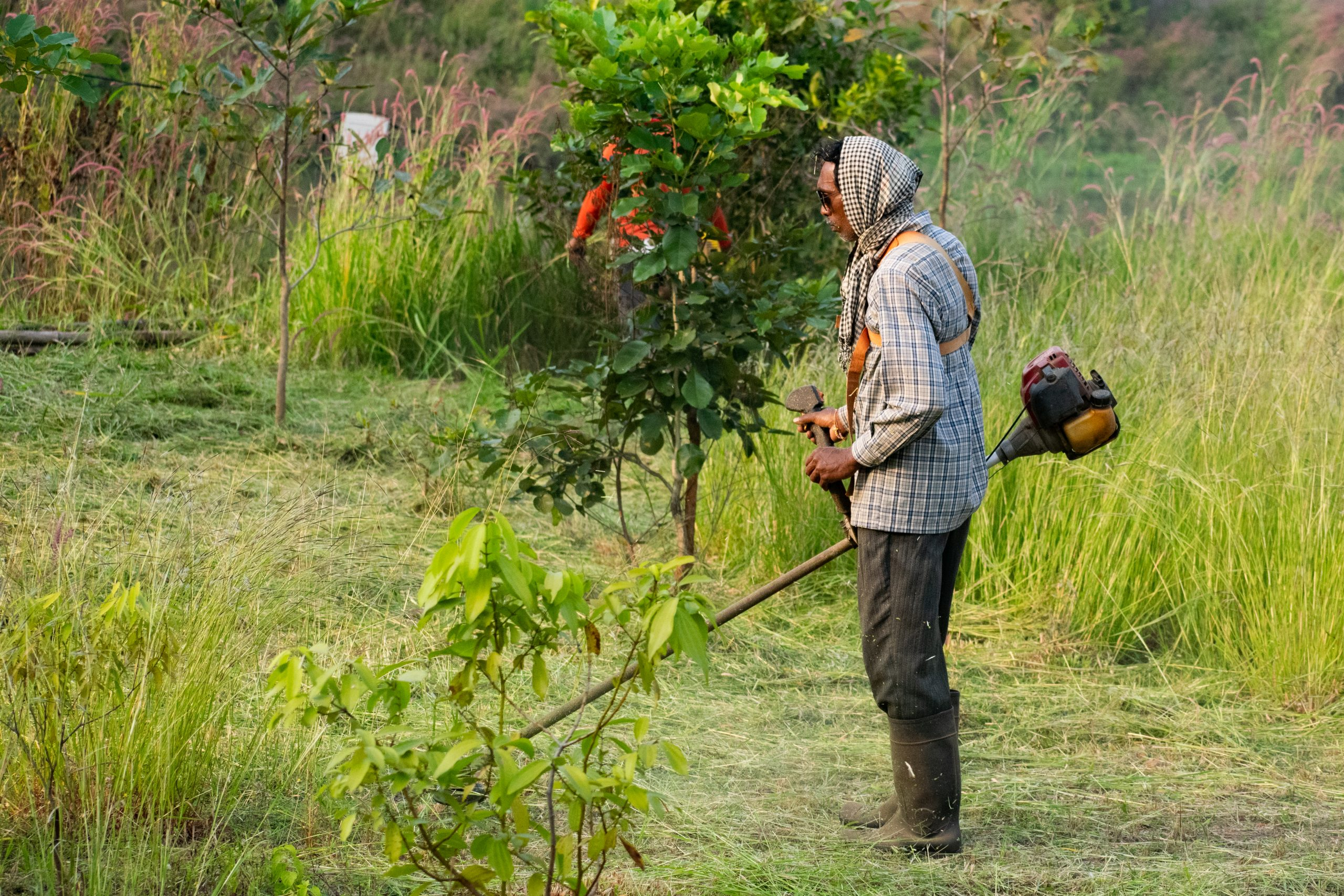 A worker cutting grass with machine