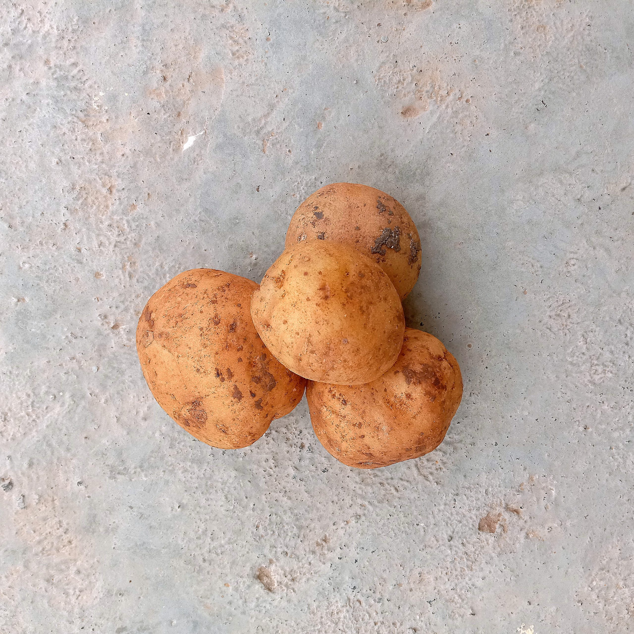potato vegetable