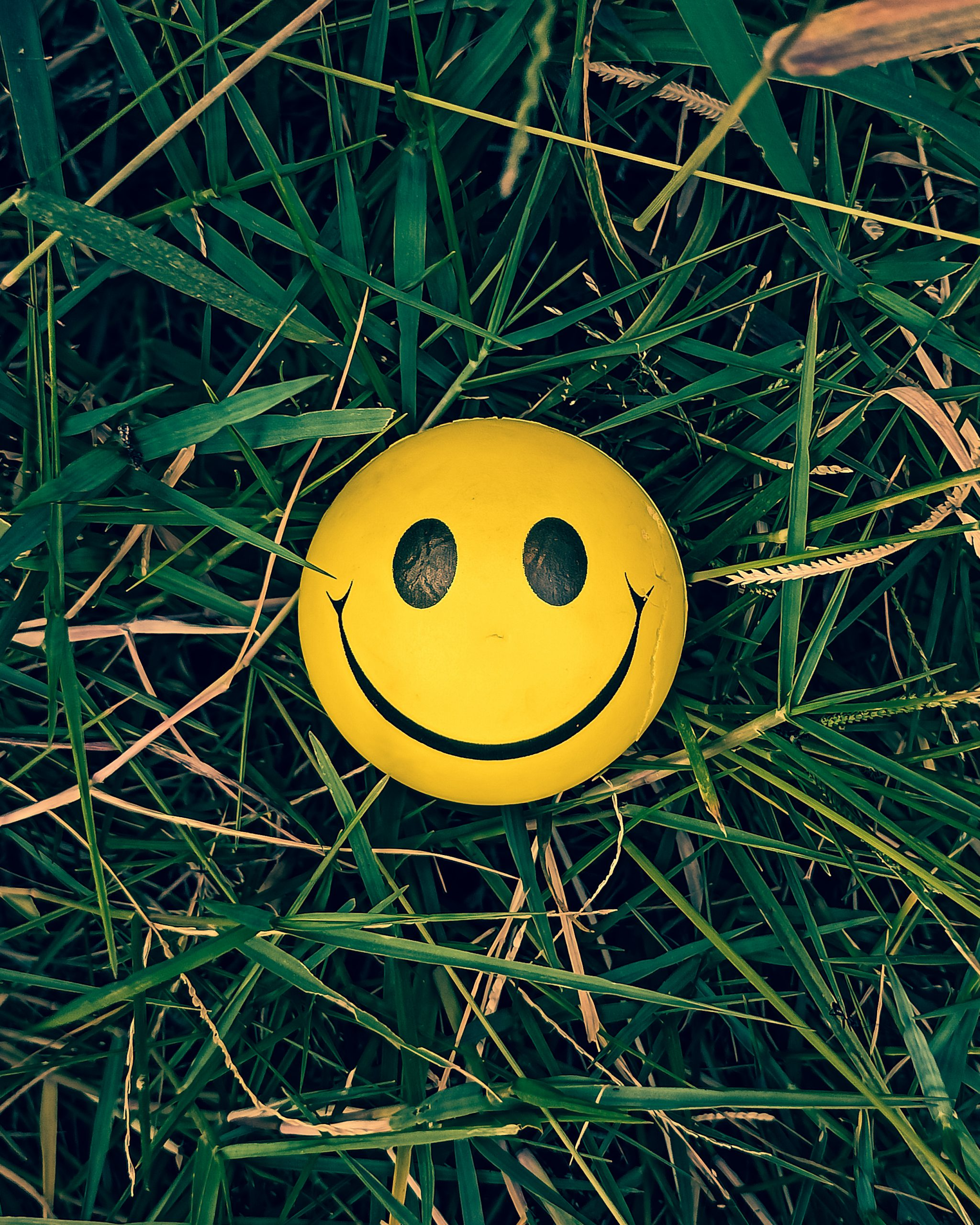 smiley ball in grass