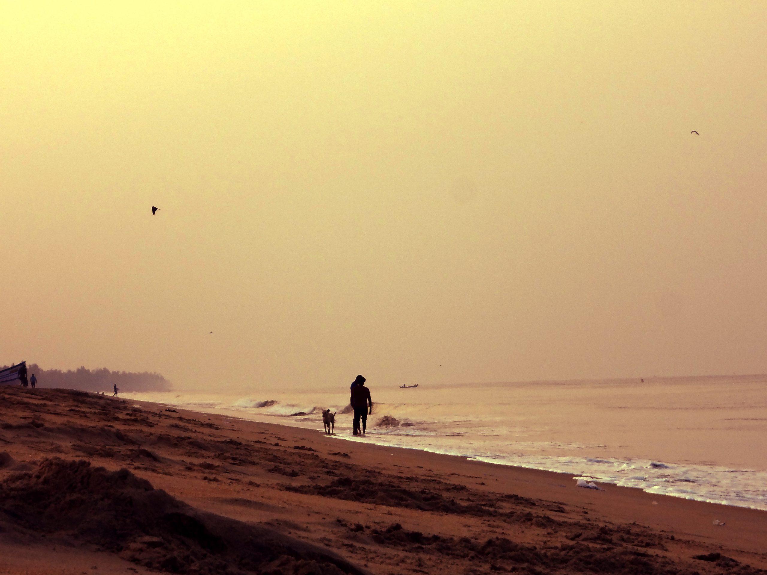 Morning on a beach
