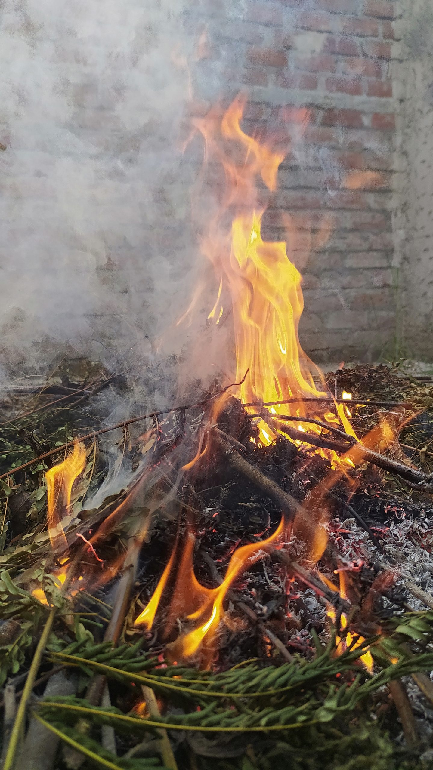 Burning twigs and dry leaves