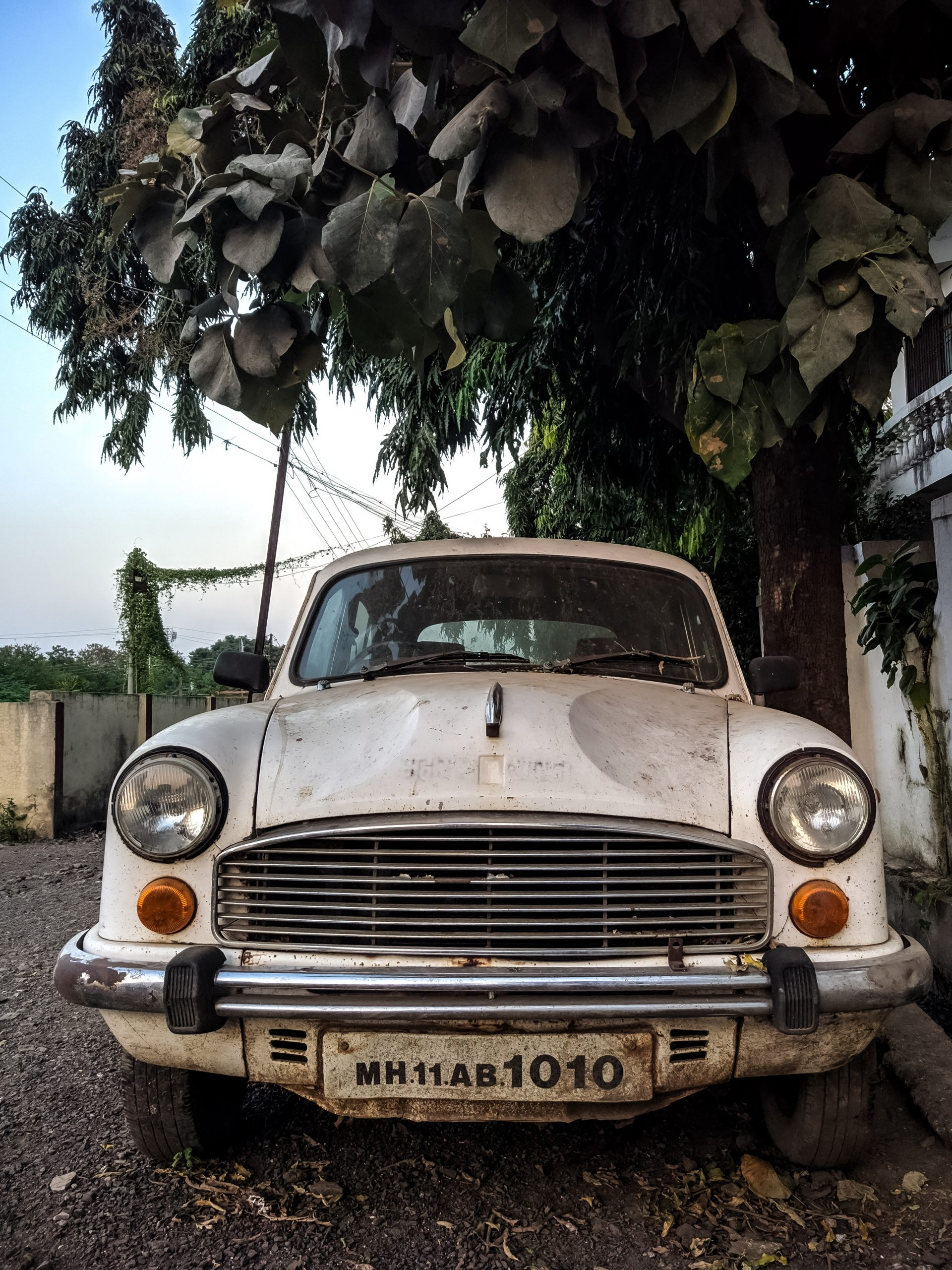 old car parked under a tree