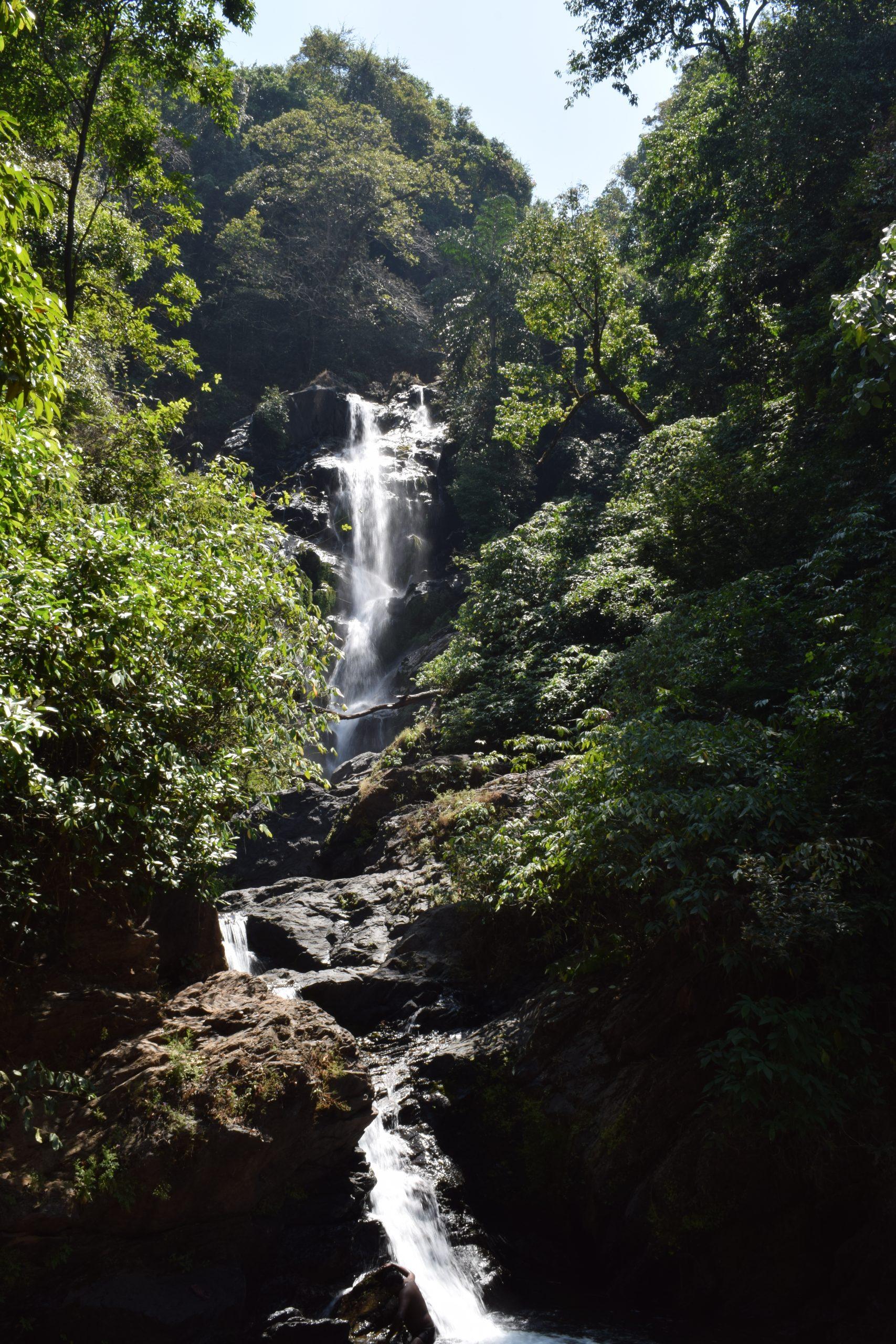 Flowing beauty of Waterfalls