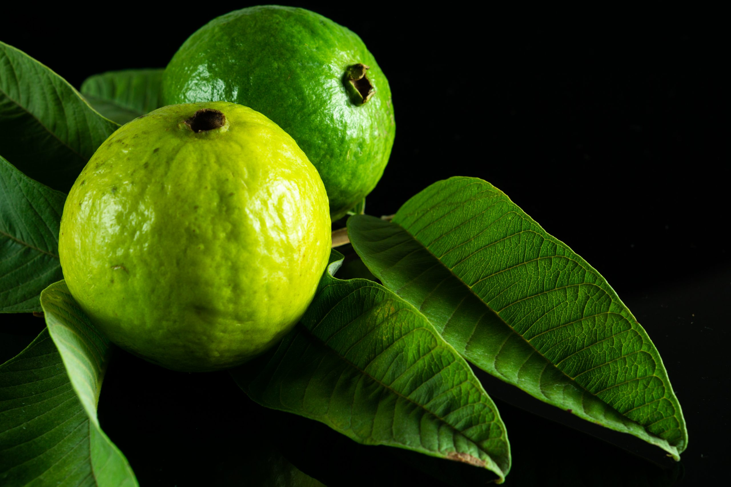 Guava fruit and its leaves