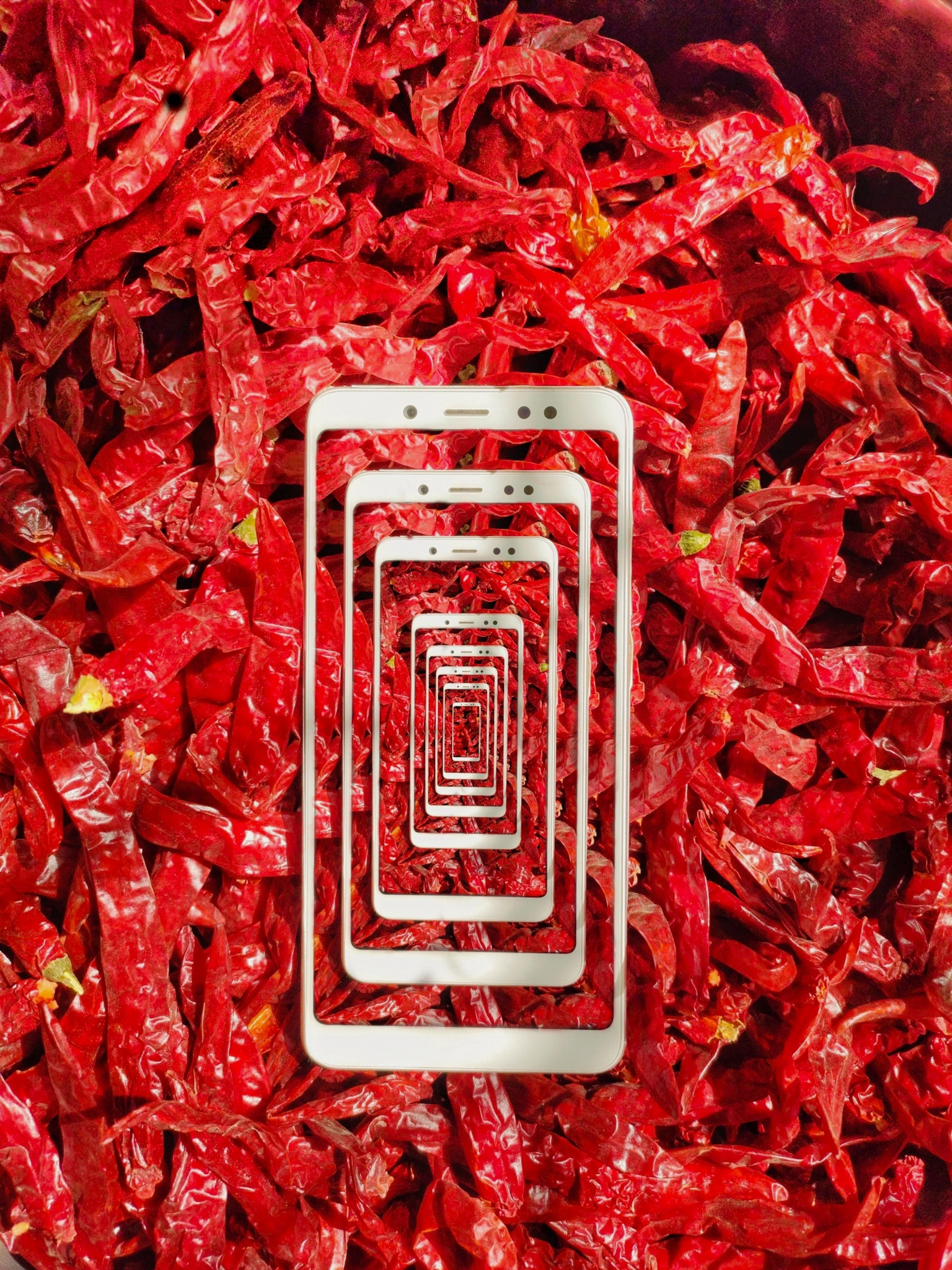 Mobile frames on red chillies