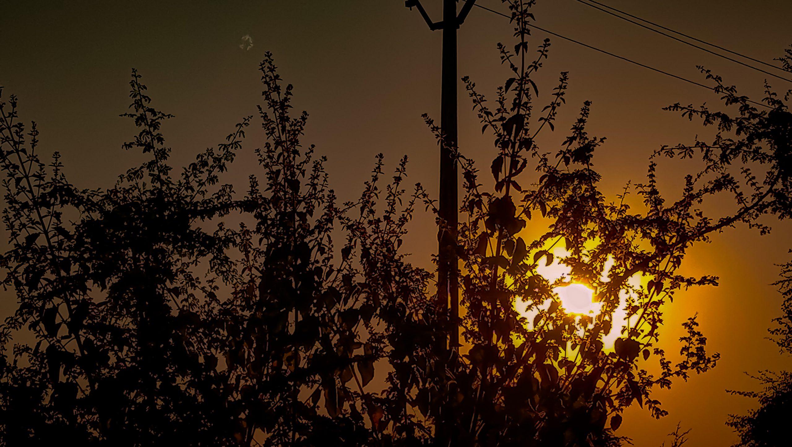 Sunrise morning time