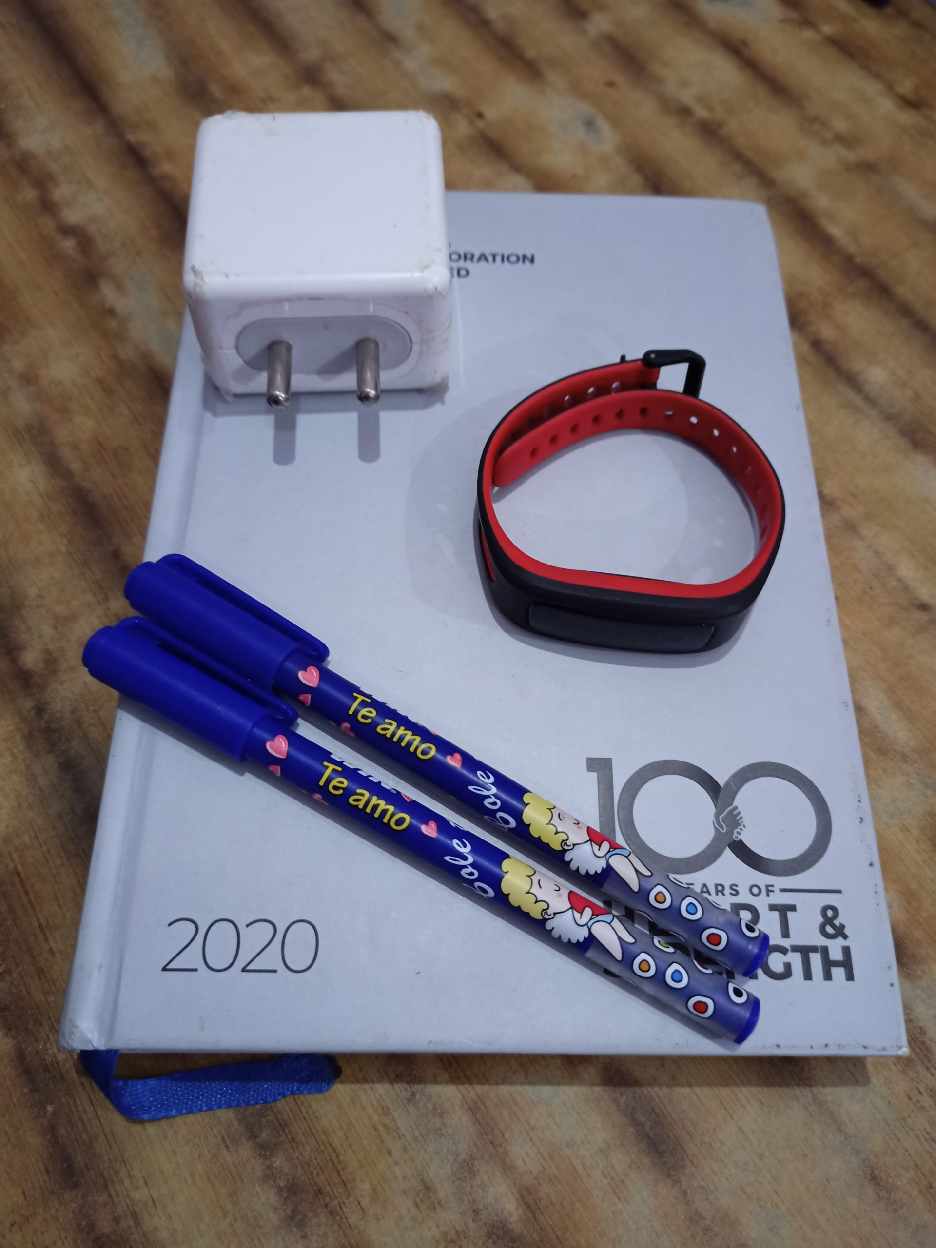 diary, pens, watch and adapter