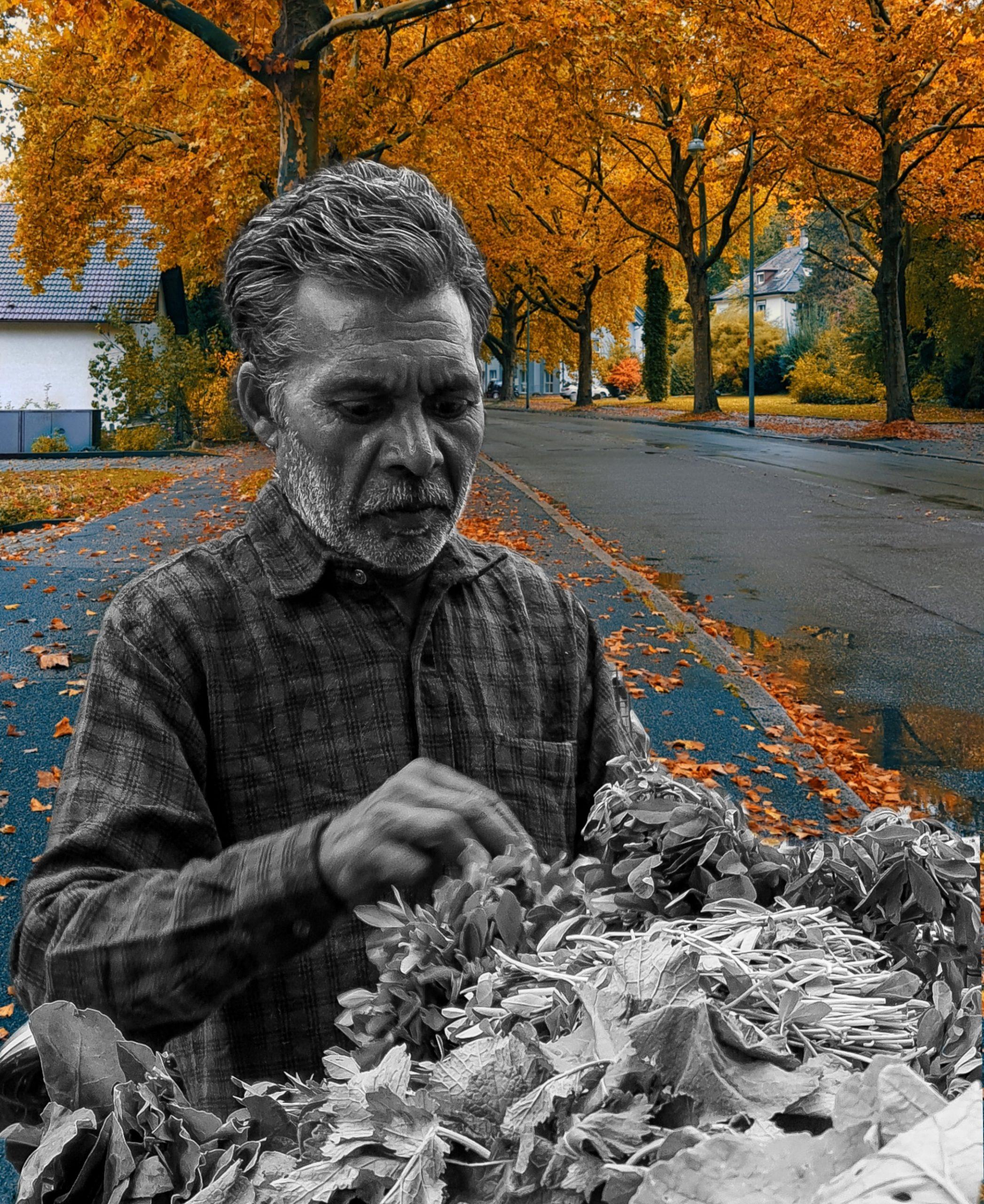 A vegetables seller