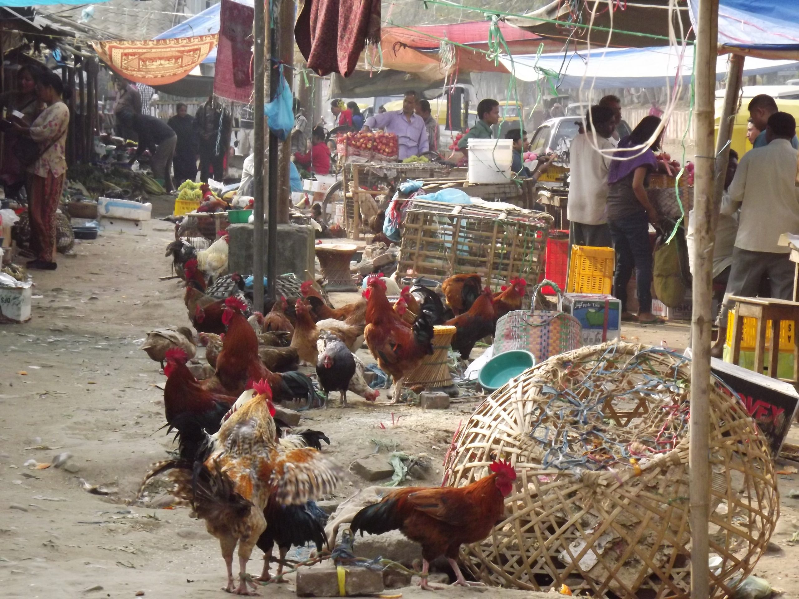 Vegetable Market of Dimapur