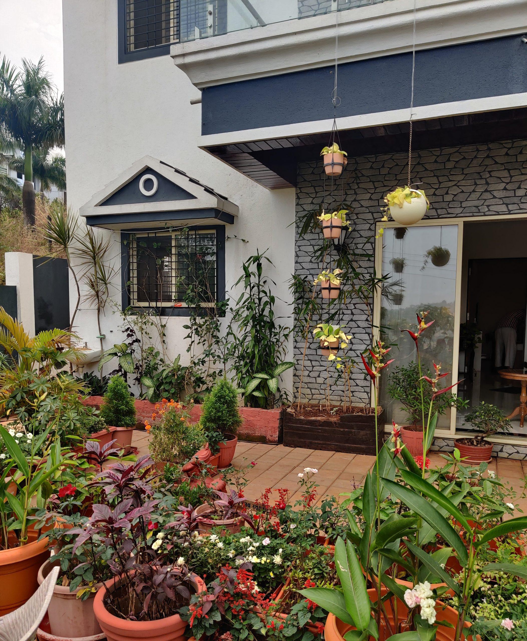 garden in a house