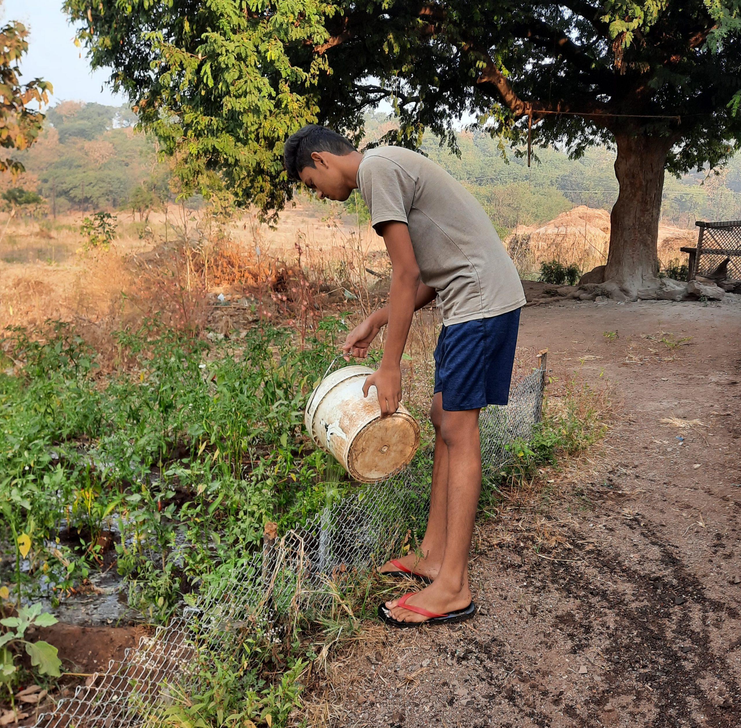 A boy Farmer supply water