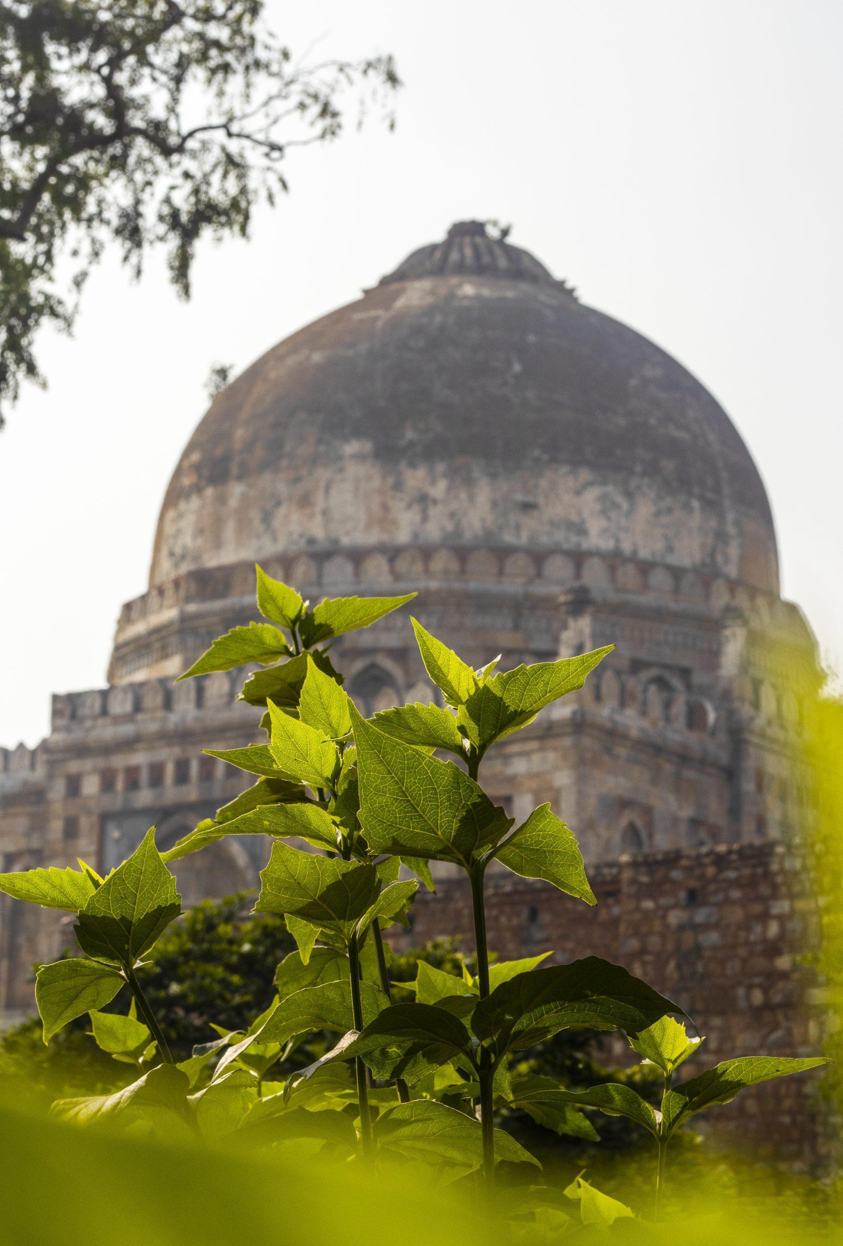 A dome in Lodhi Garden