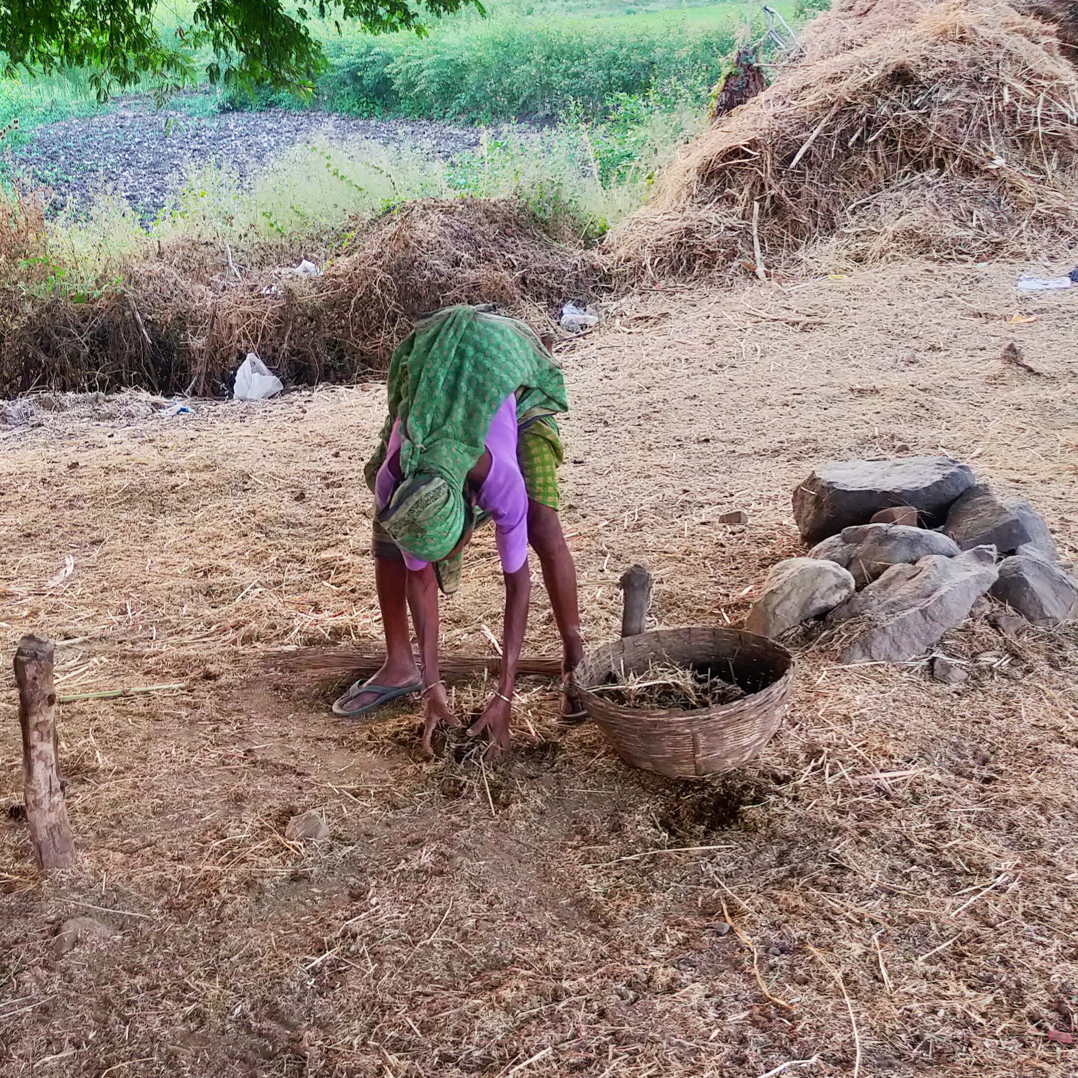 A farmer cleaning livestock's waste