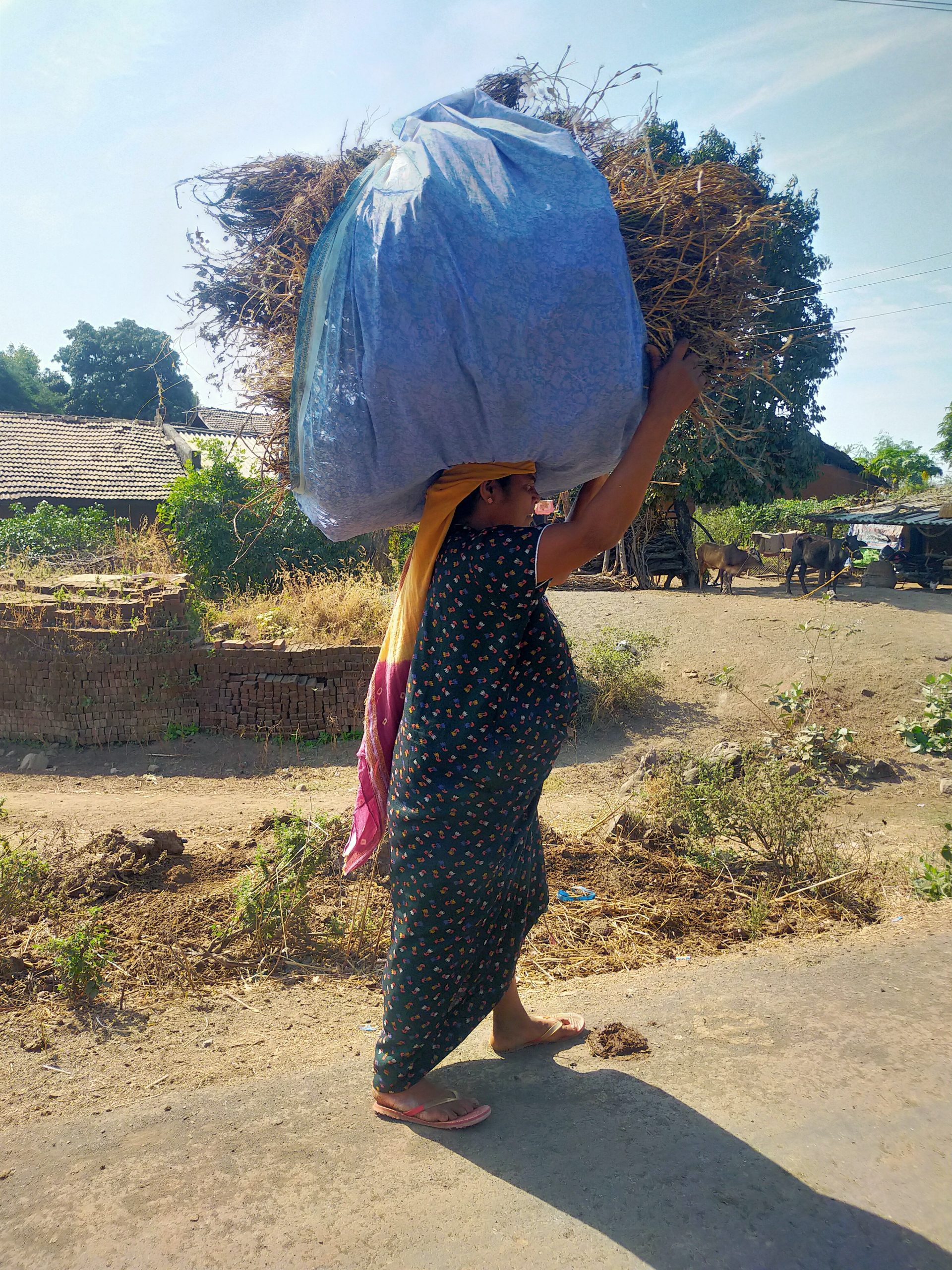 A village woman carrying burden