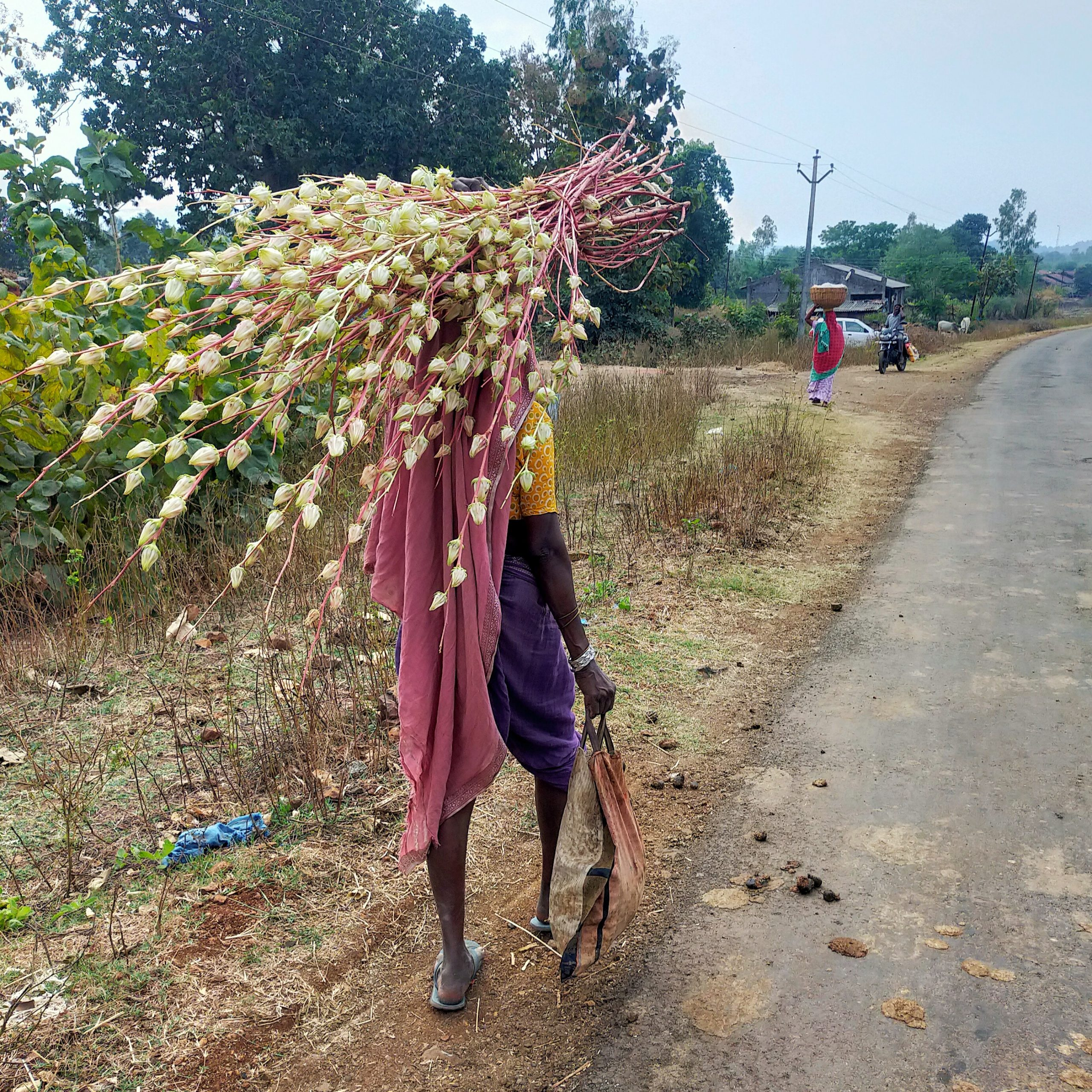 A female farmer carrying cut plants