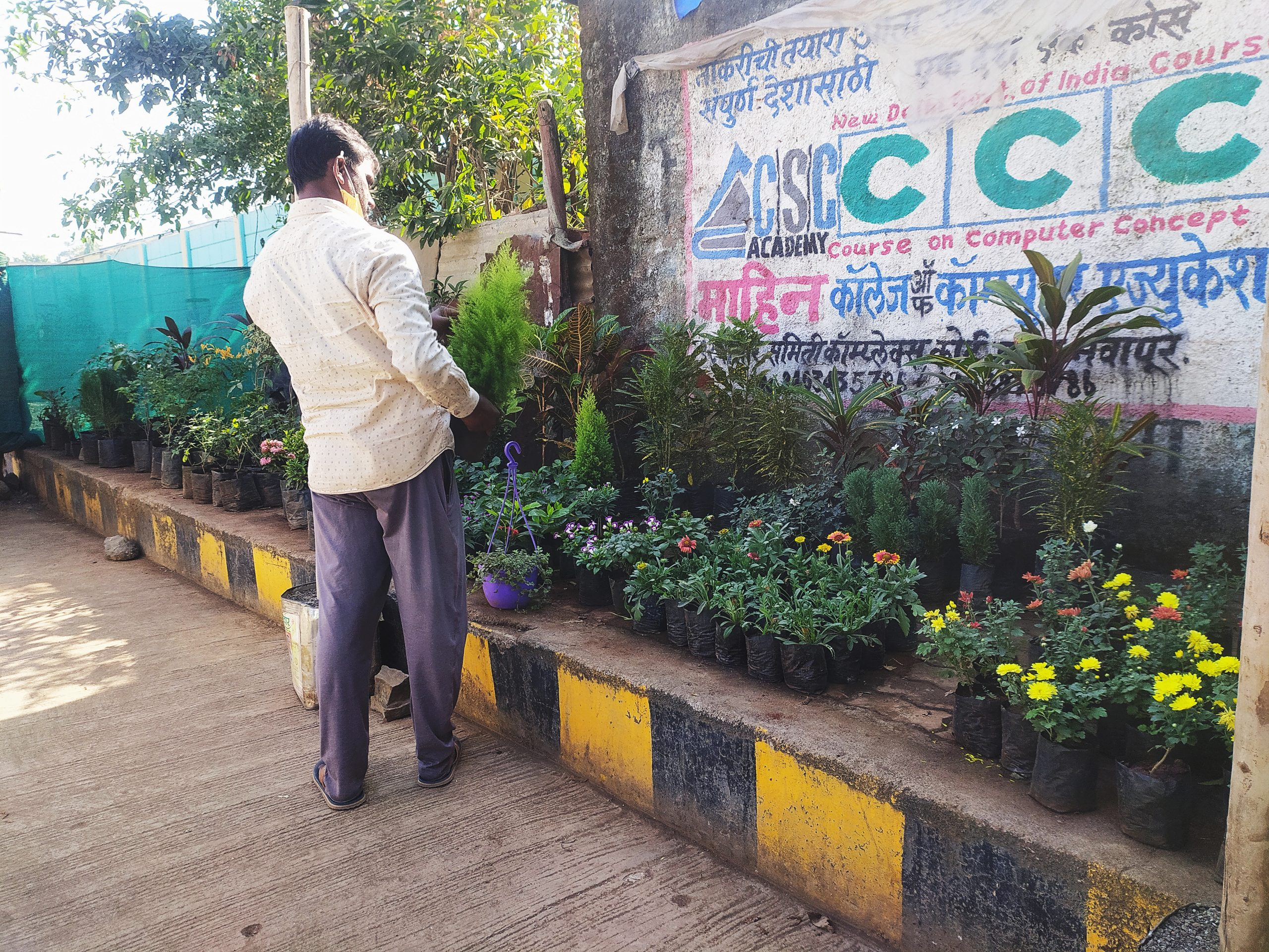 A man selling plants