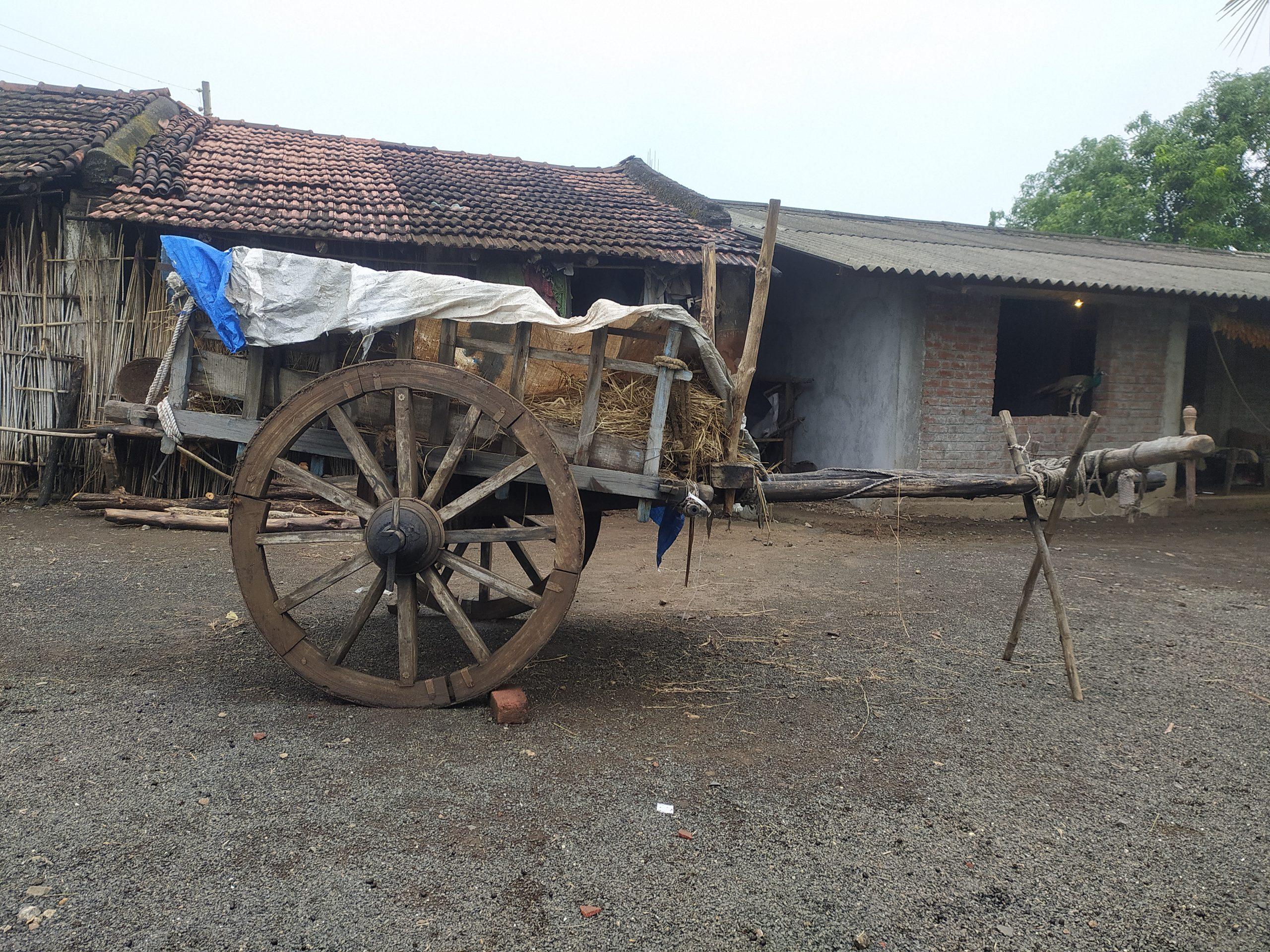 A oxcart