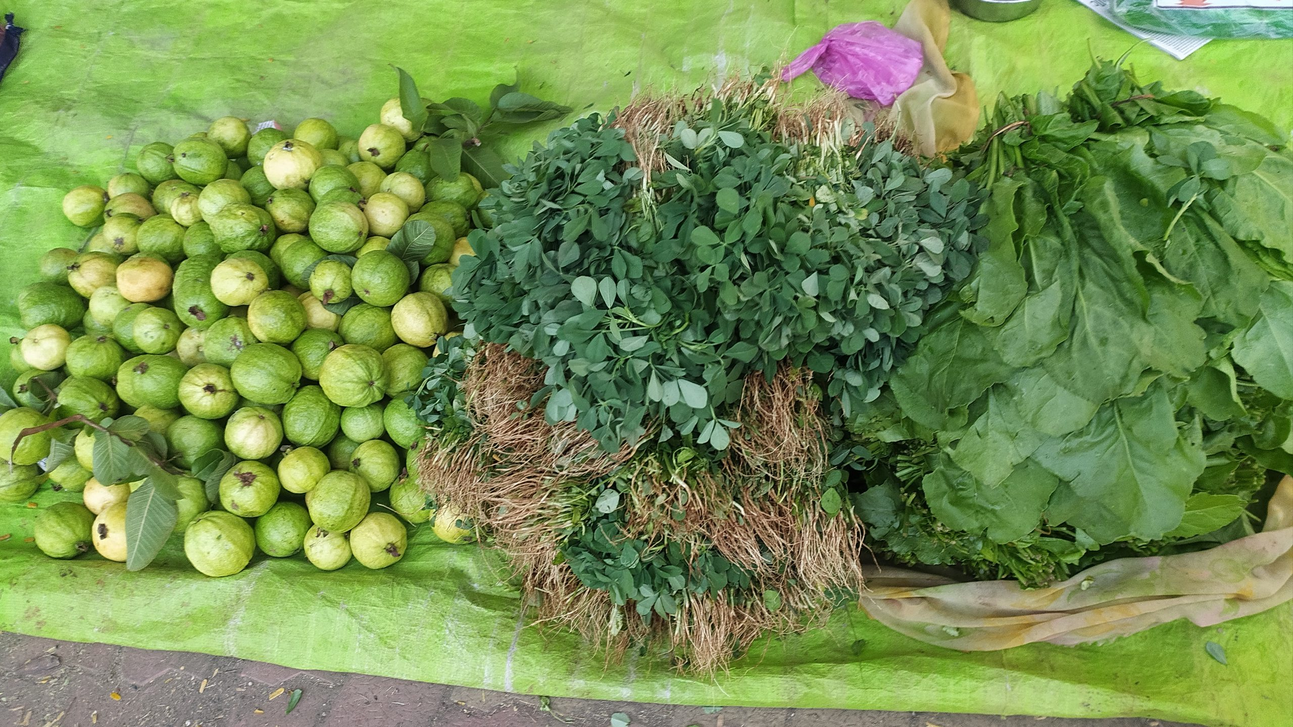 leafy vegetables and herbs